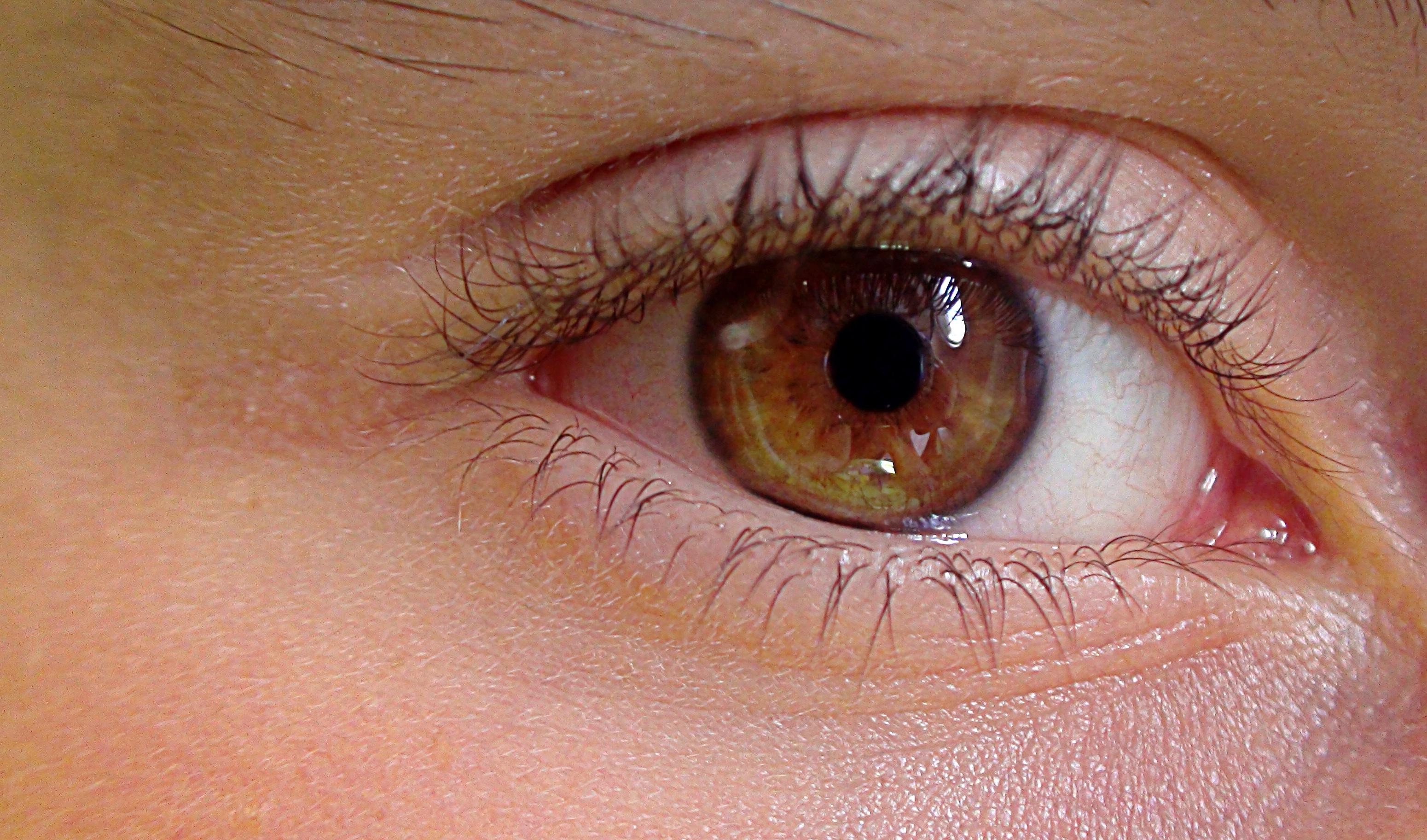 Kostenlose foto : Betrachtung, Lippe, Augenbraue, Mund, Wimper ...