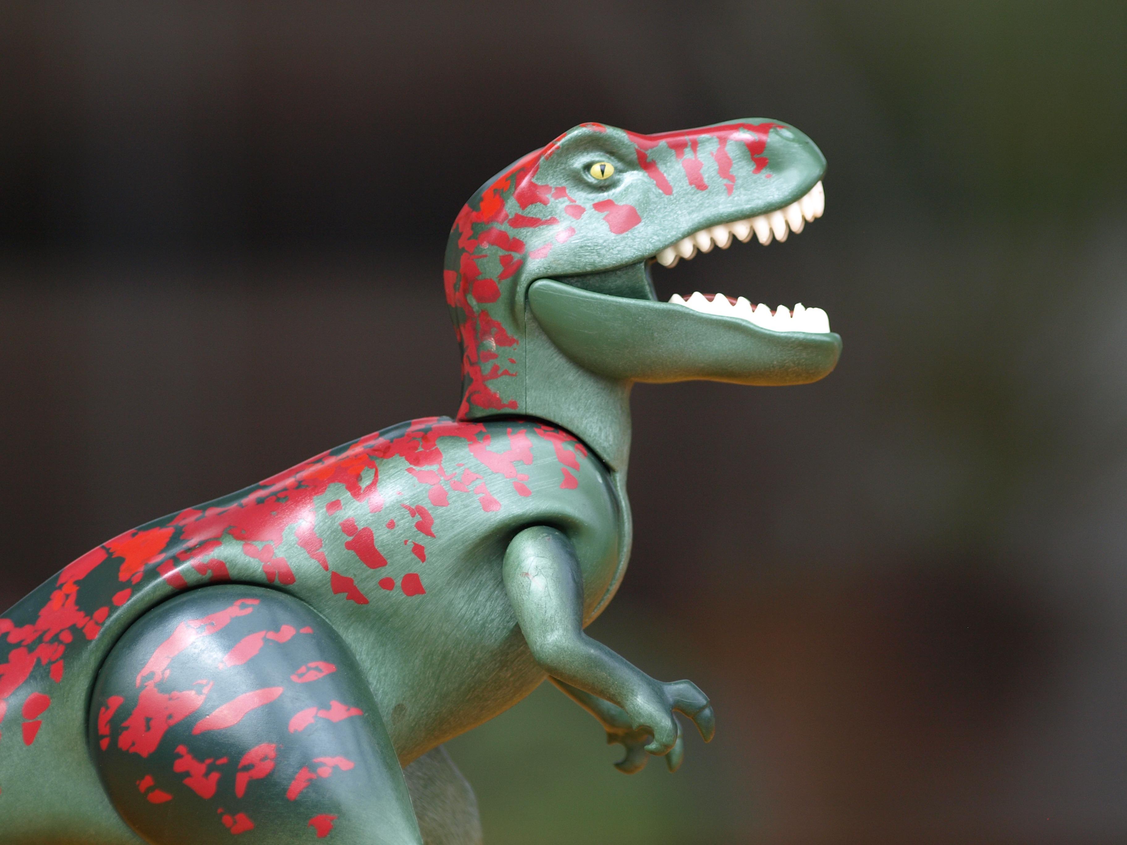 Free images fauna tyrannosaurus rex playmobil toys for Playmobil dinosaurios