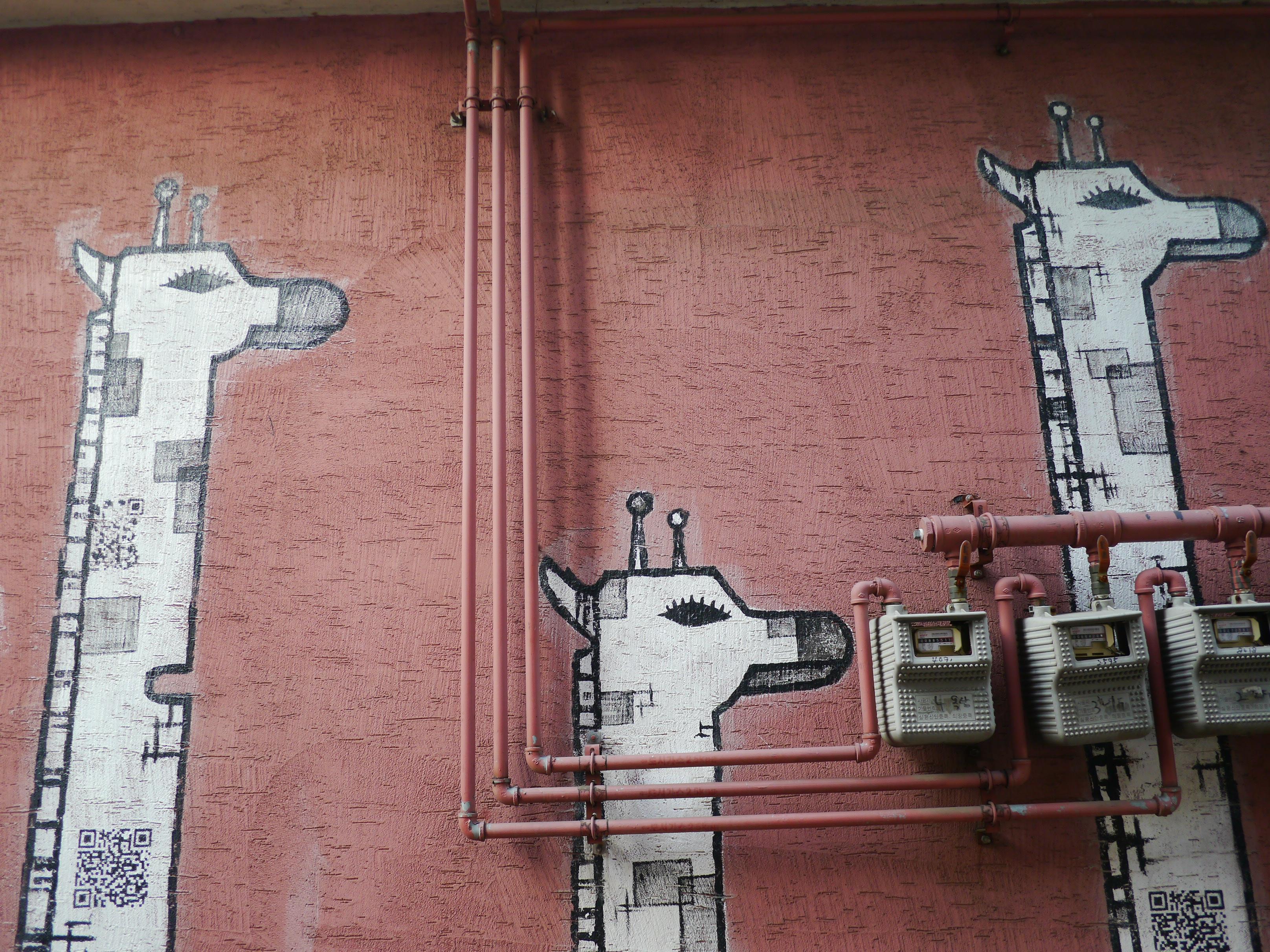 Darmowe Zdjęcia Droga Ulica Zwierzę ściana Czerwony