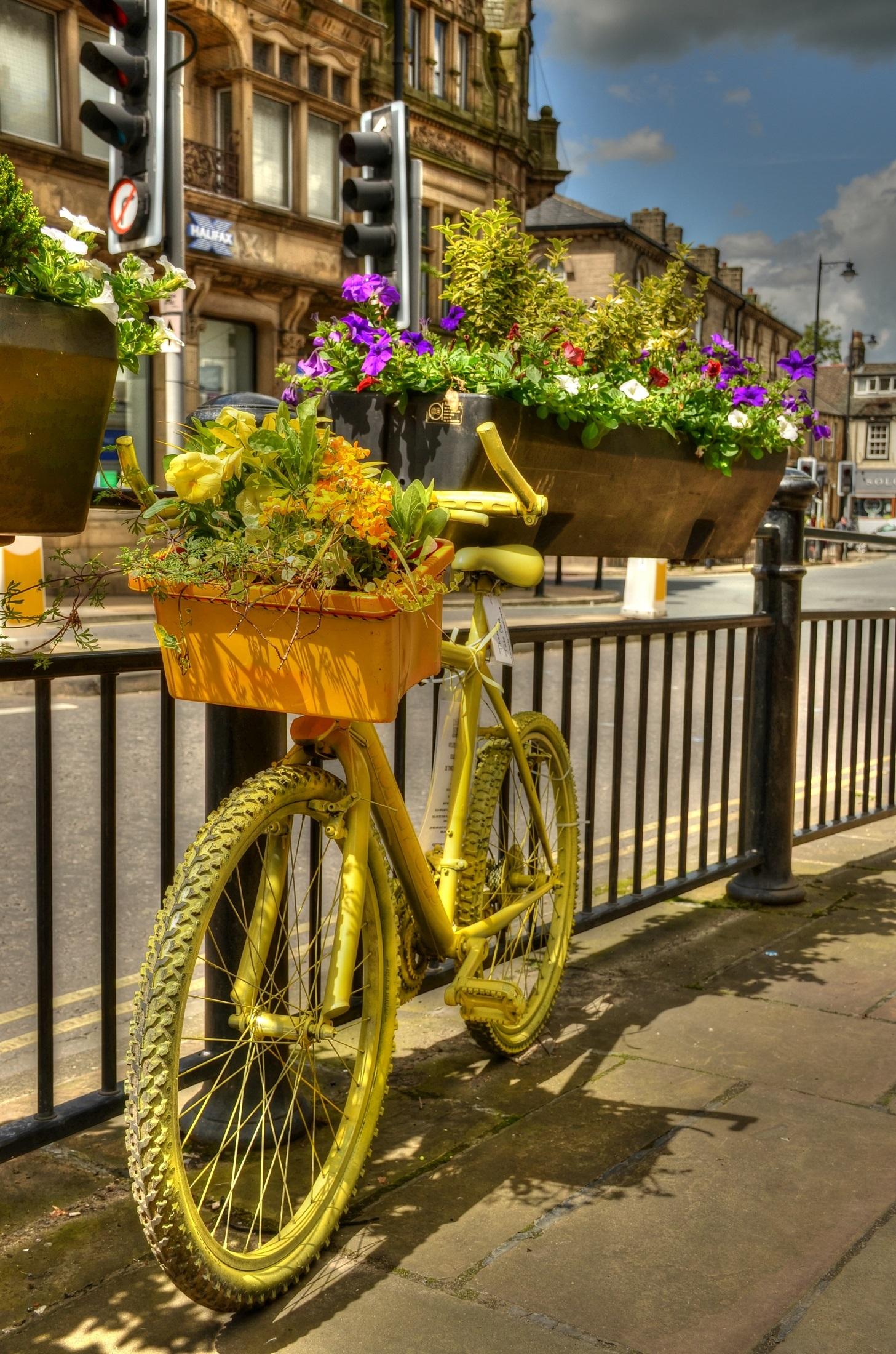 Images Gratuites : route, rue, trottoir, fleur, ville, vélo ...