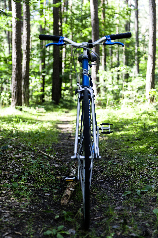 Fotos gratis : la carretera, sendero, vendimia, rueda, Retro ...