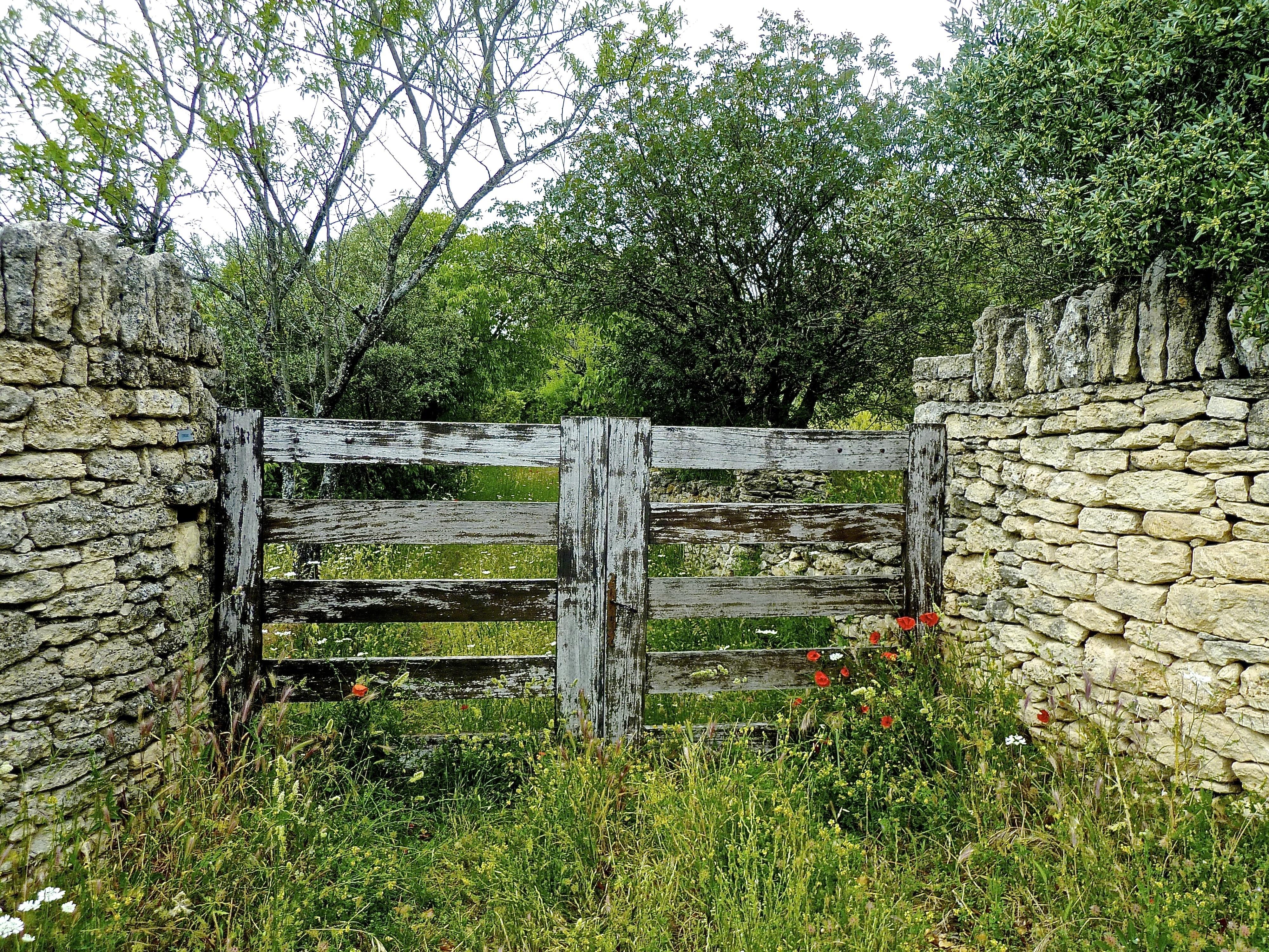 Fotos gratis : rock, cerca, césped, pared, Pasarela, verde, Entrada ...