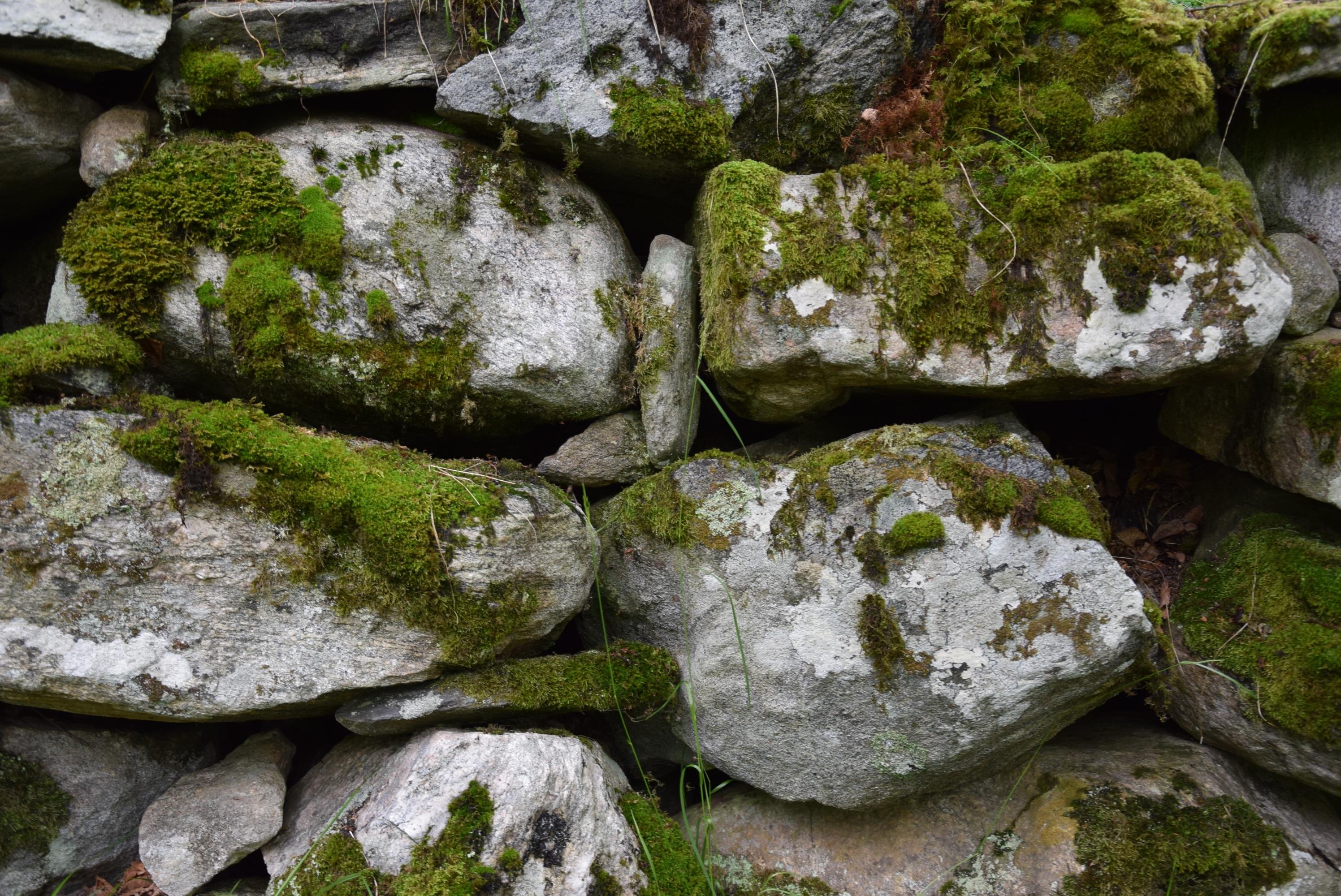 картинки старых камней занимается благотворительностью