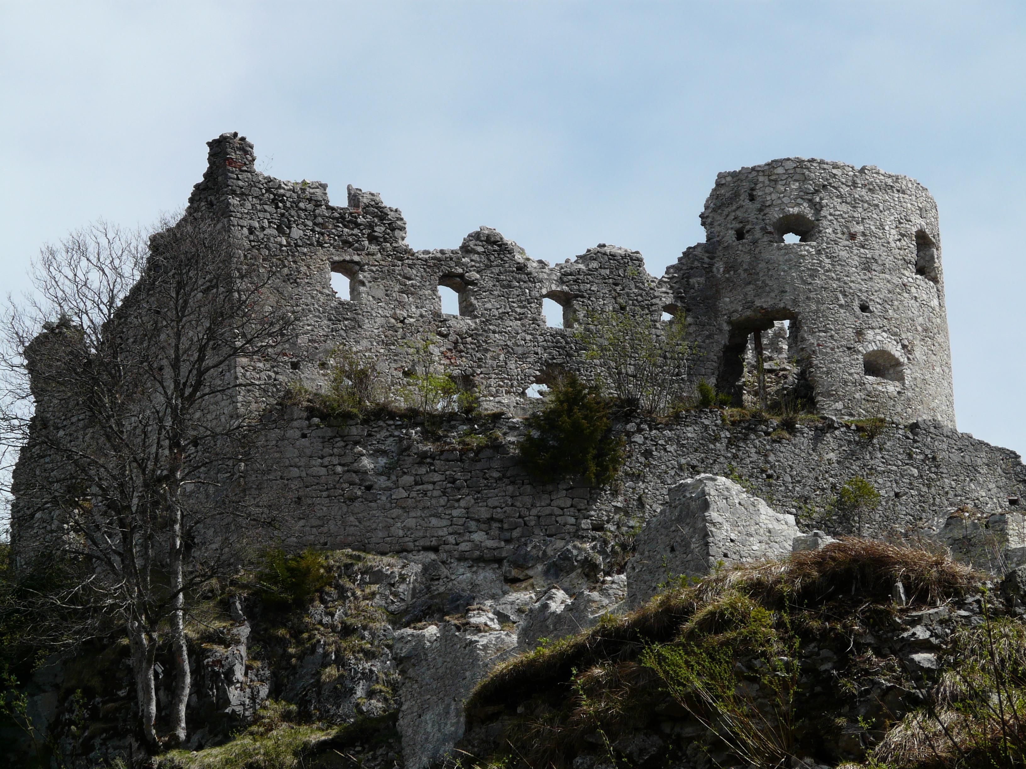 осуществляется фотографии древних рыцарских замков в горах компания ведет