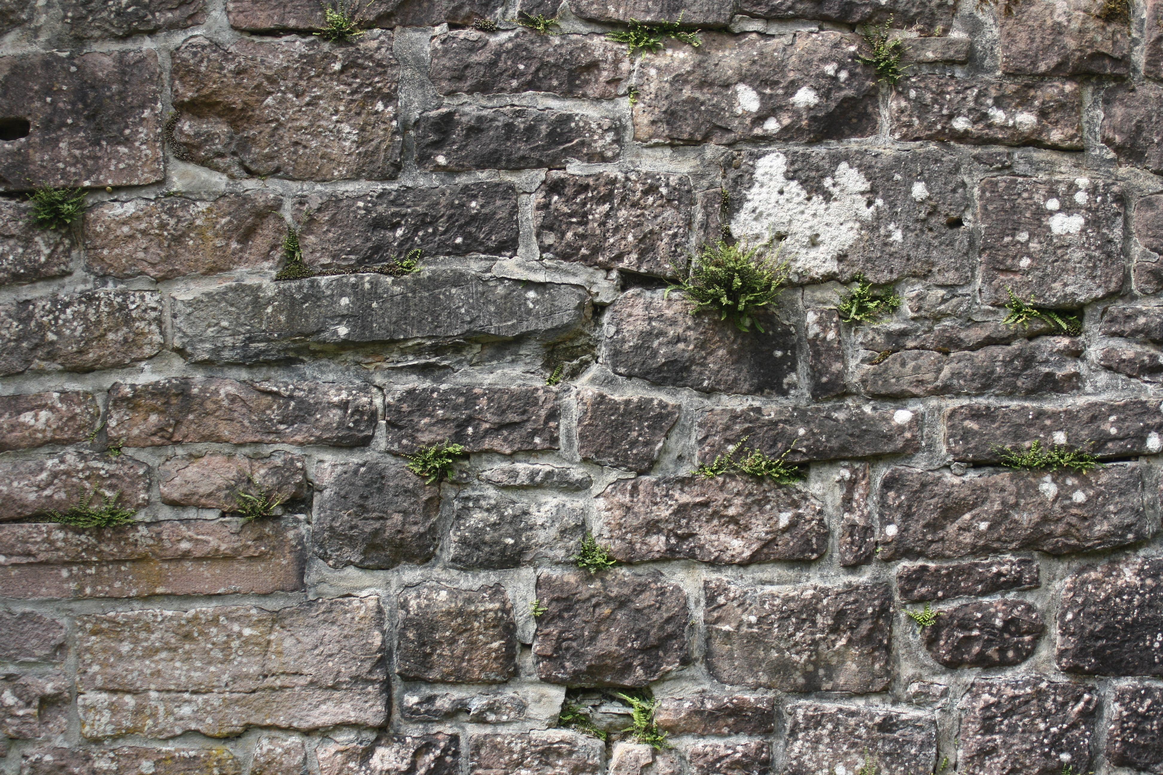 無料画像 岩 構造 テクスチャ 建物 石畳 城 石垣 材料