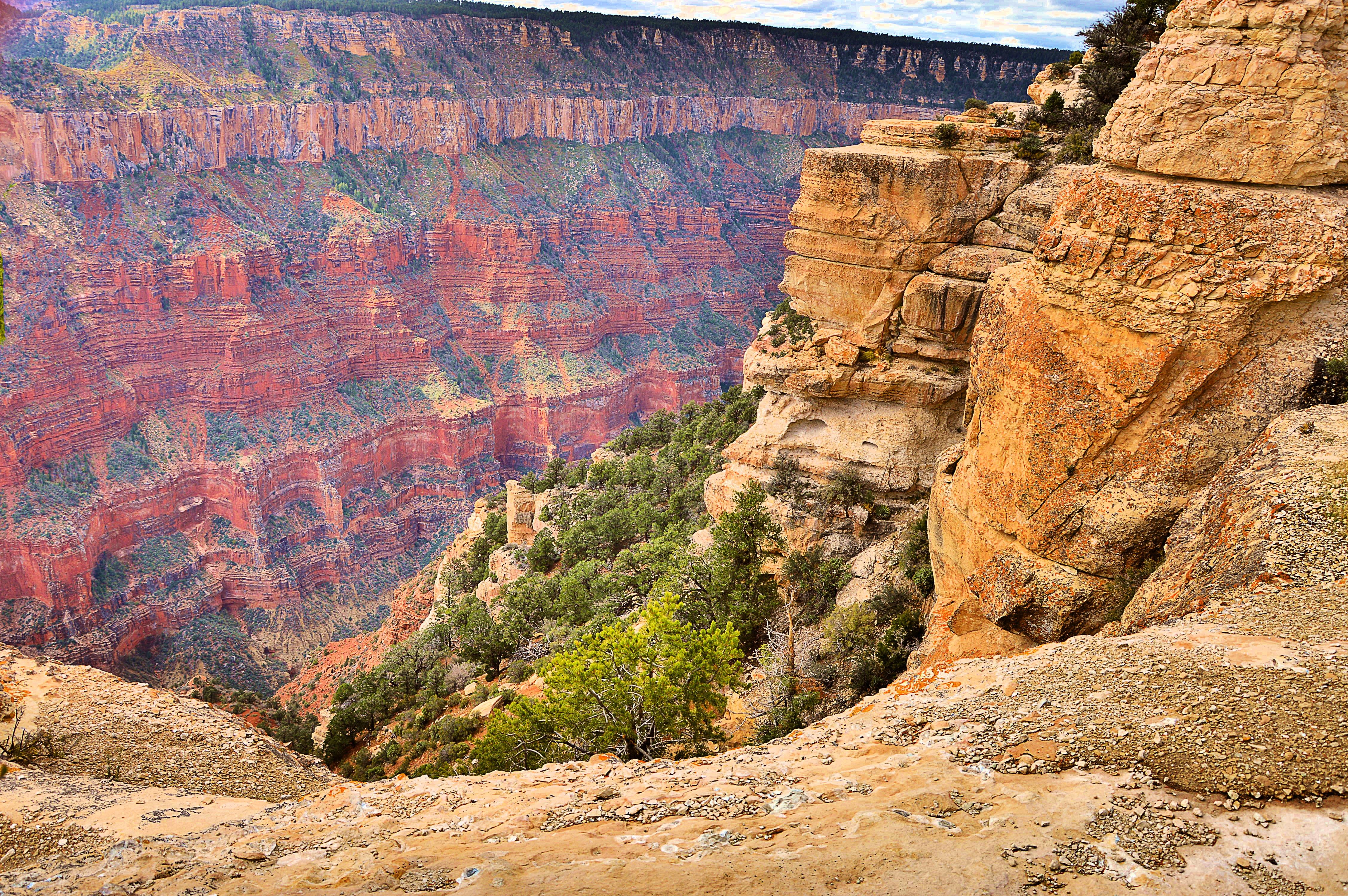интересные достопримечательности гранд каньон в сша фото белой плитки