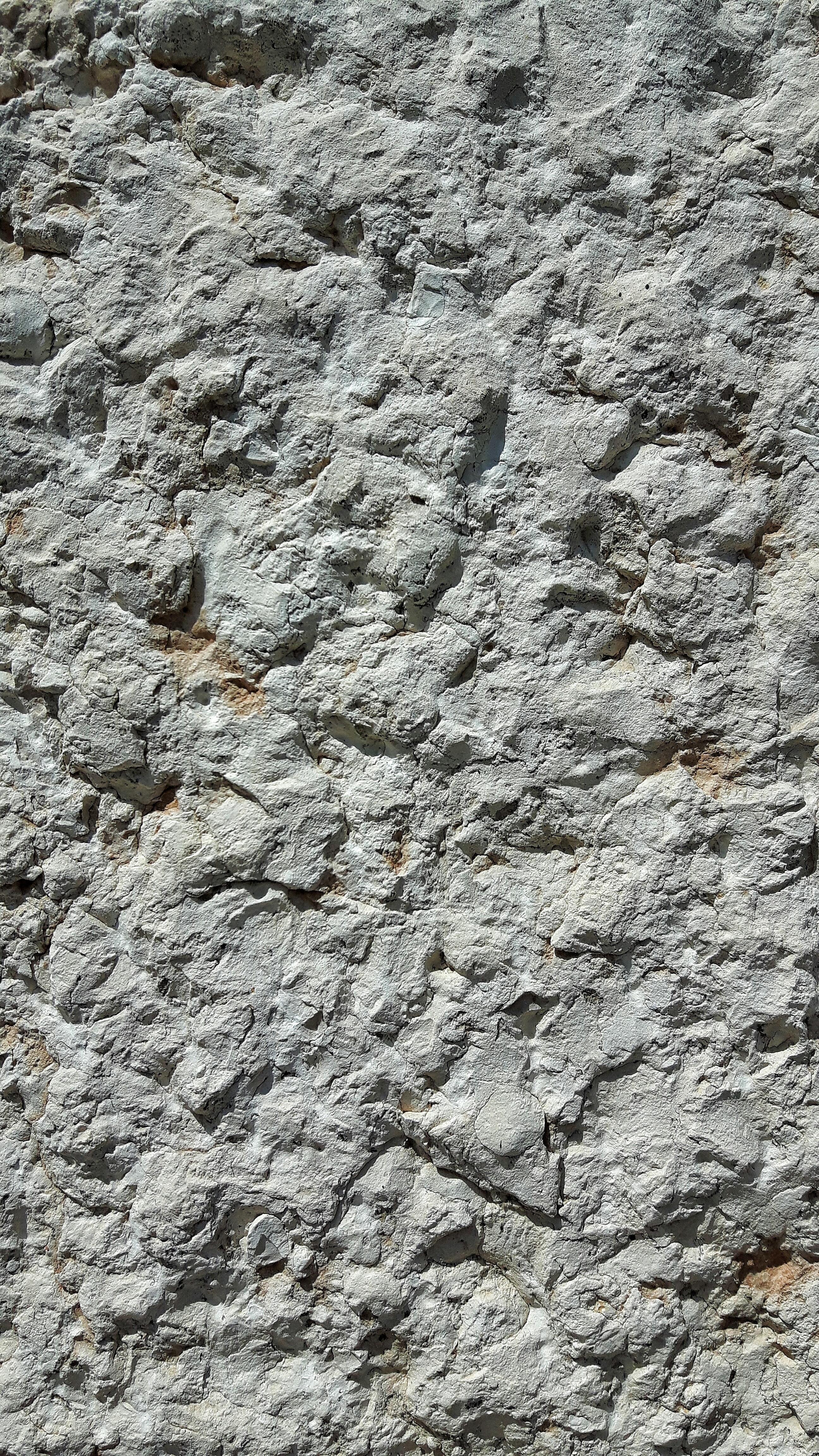 kostenlose foto : rock, holz, textur, kofferraum, mauer, asphalt ... - Steinwand Farbe