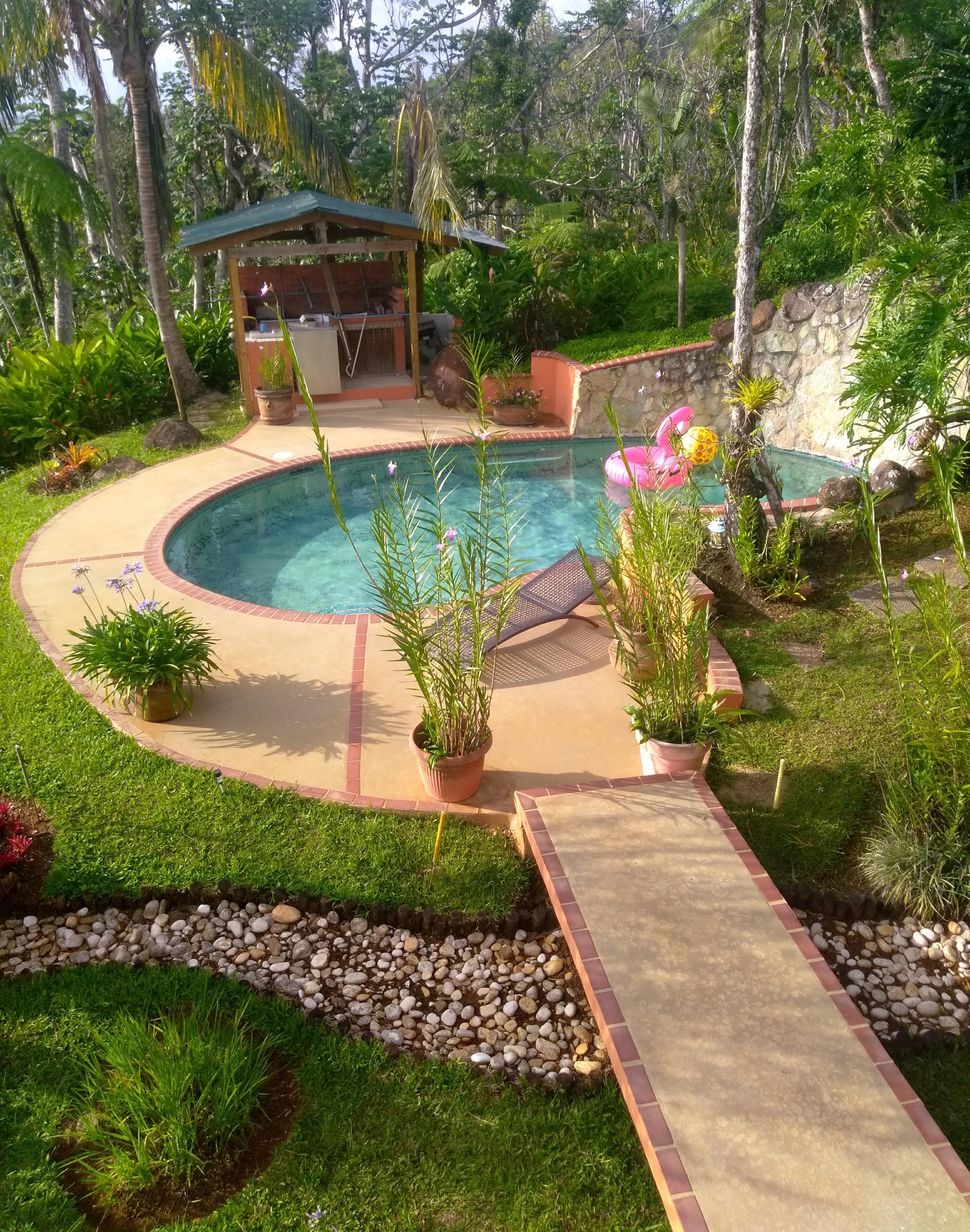 Free Images Rocks Plants Grass Brick Bbq Yard Swimming Pool