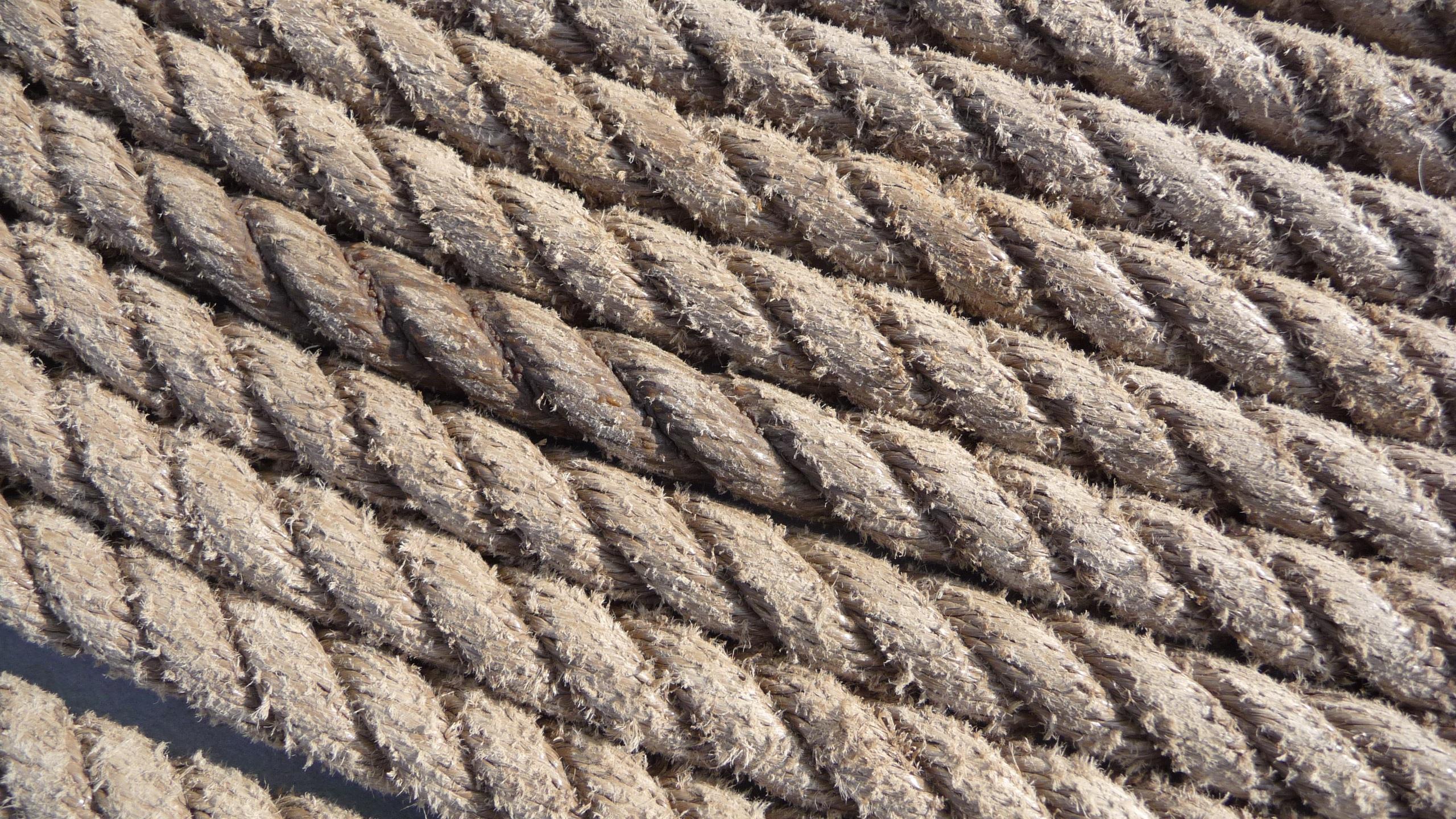 Immagini Belle : corda, avvio, linea, porta, Materiale, filo, netto ...
