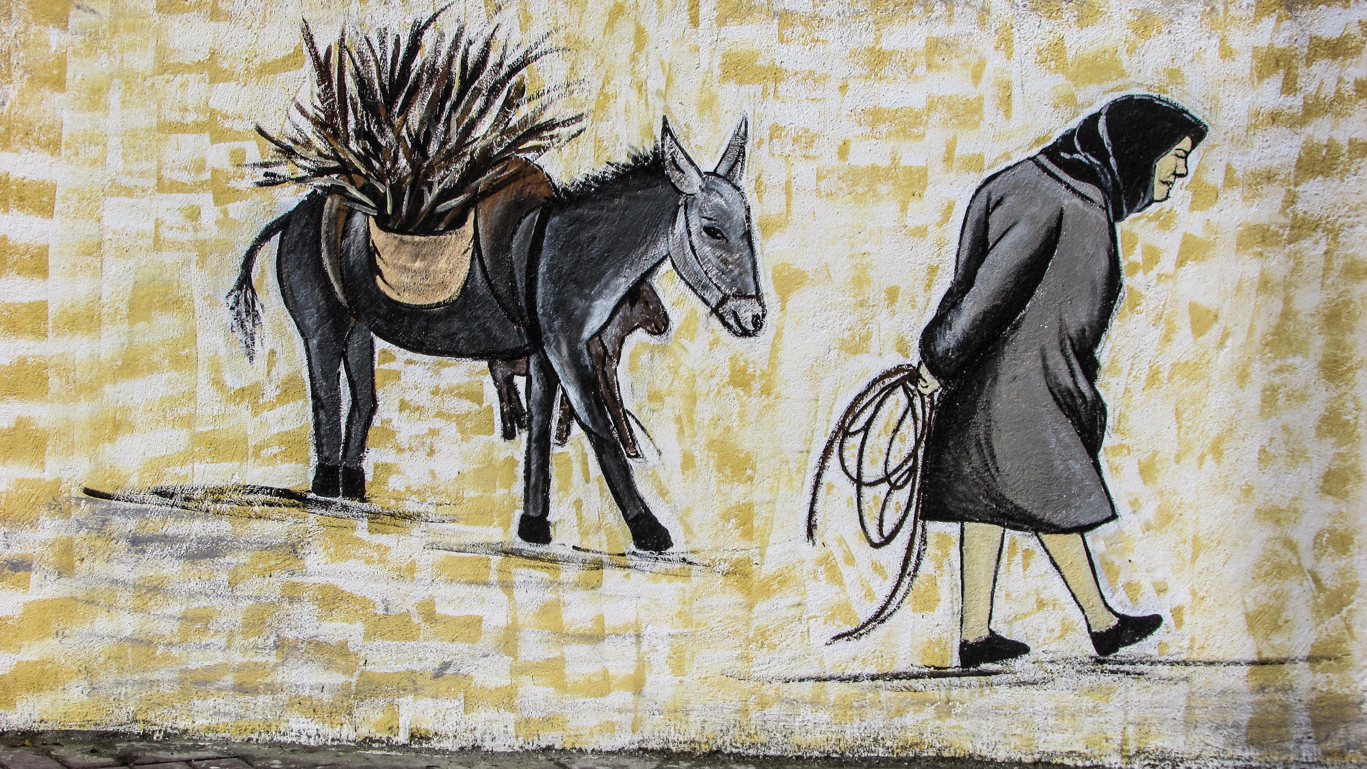 Fotoğraf Rustik Köy Duvar Yazısı Boyama Yaşlı Kadın Eşek