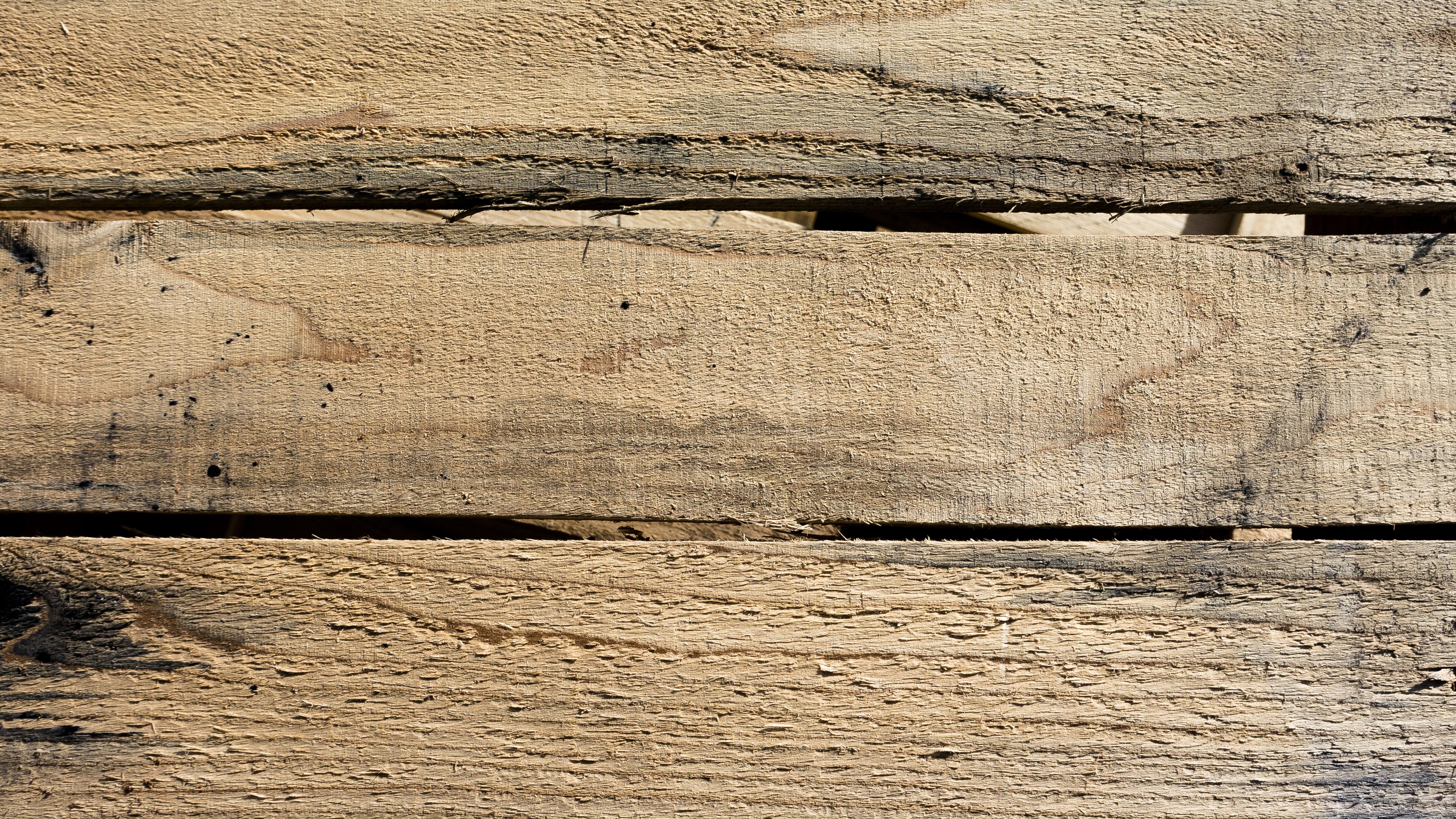 madeira abri de jardin