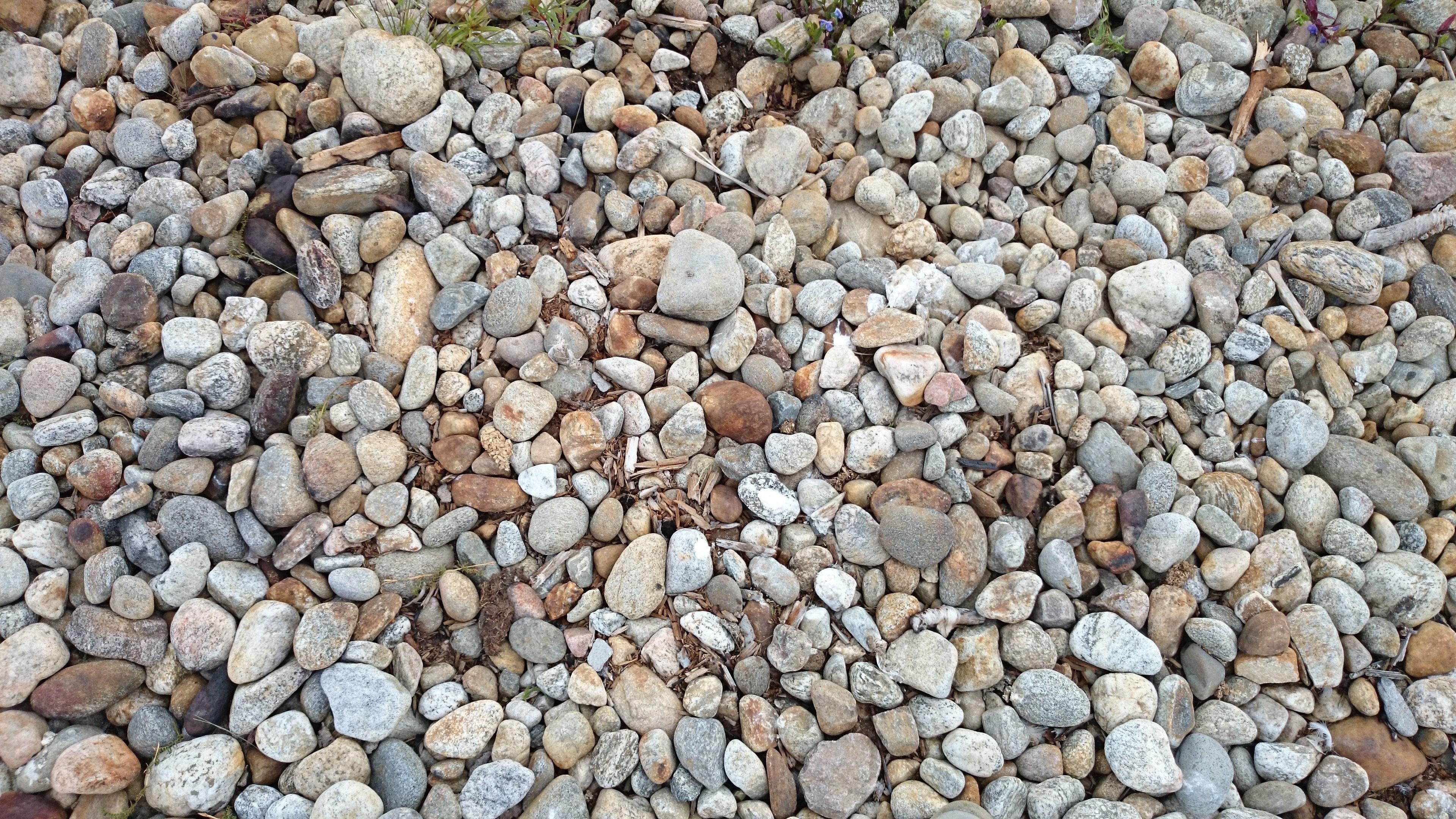 Fotos gratis arena rock guijarro suelo rocoso for Suelos para jardines fotos