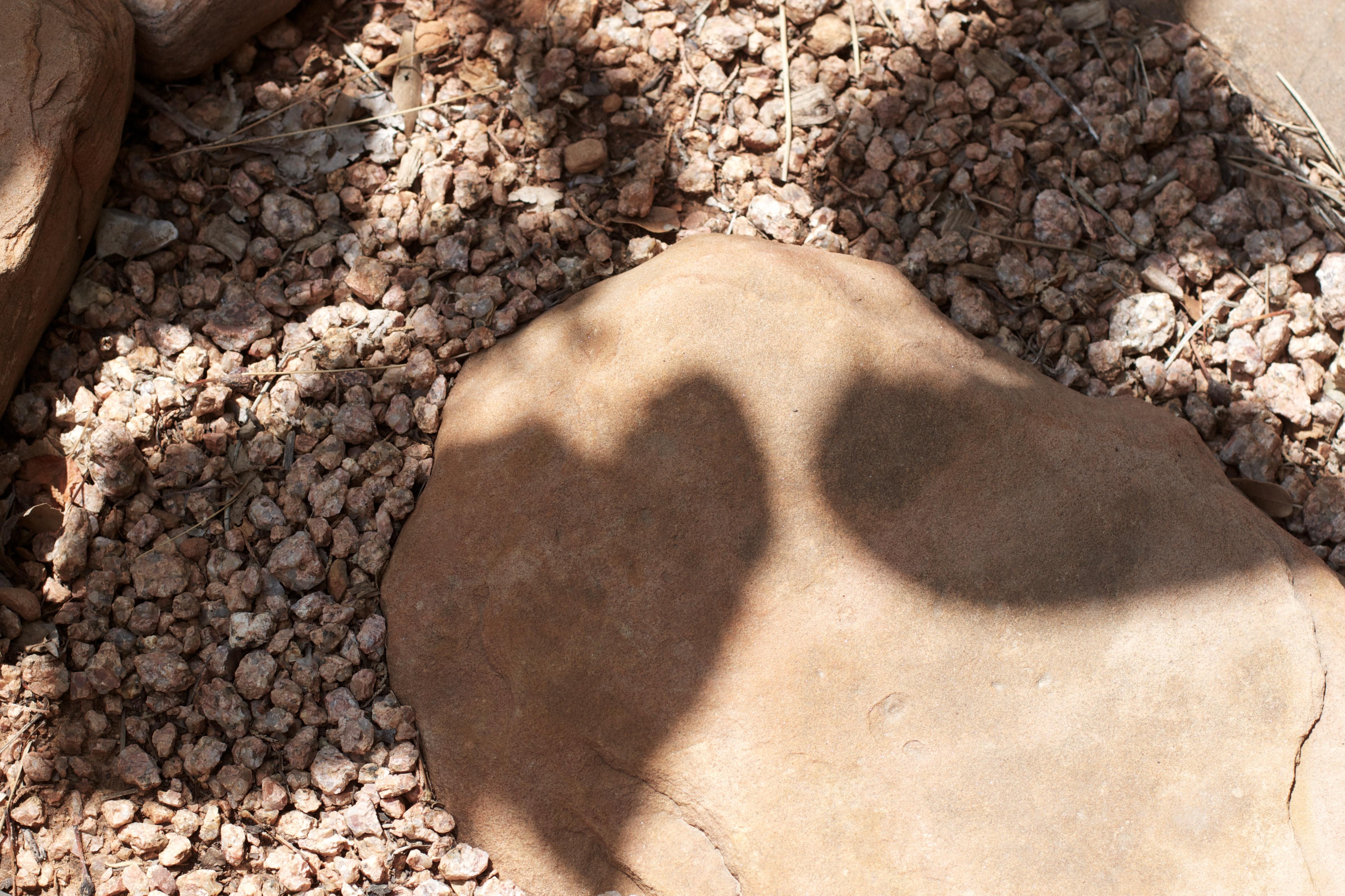 картинки глина песок камни распространенным материалом для