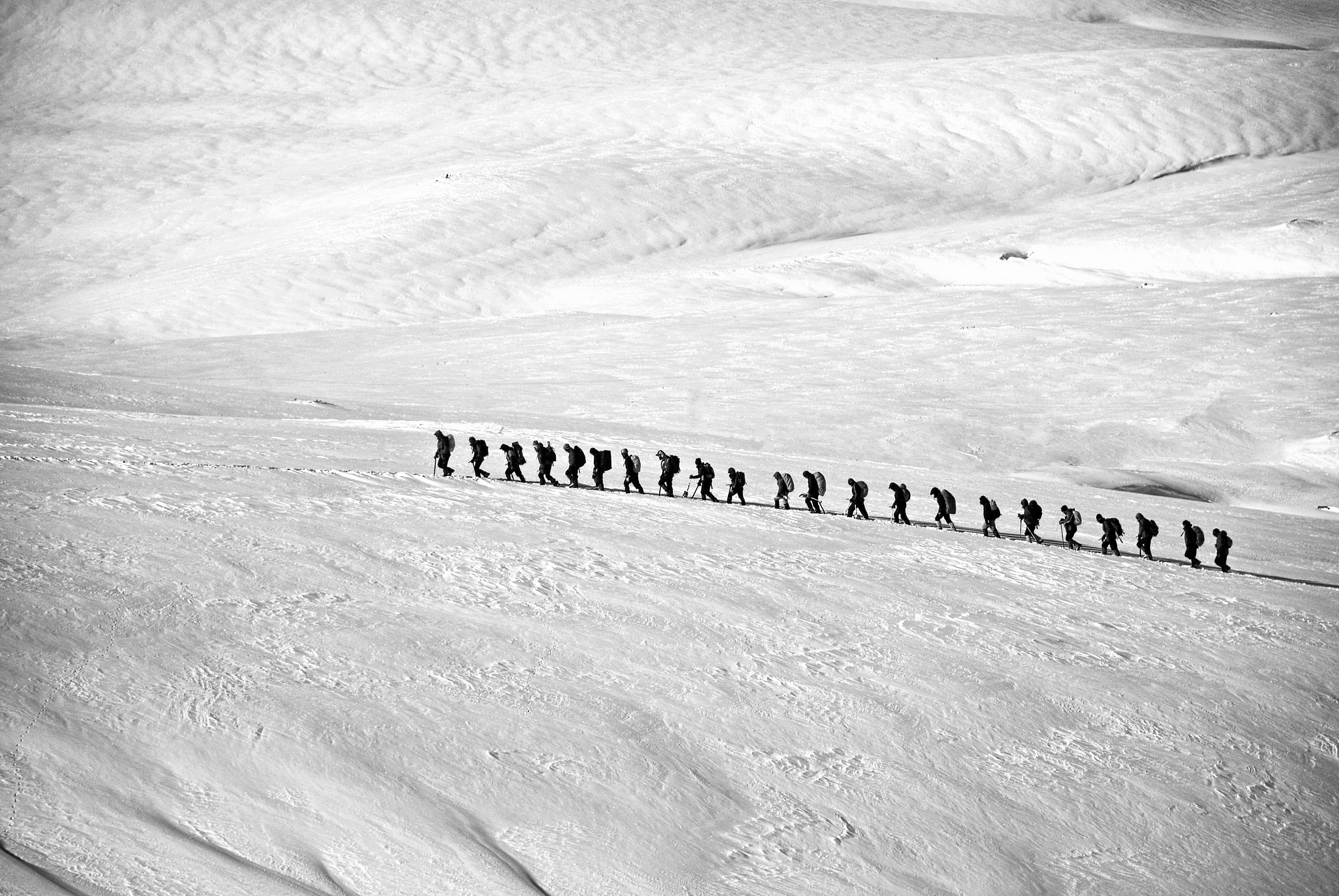 Kostenlose foto : Sand, Gehen, Schnee, Winter, Flügel, Schwarz und ...