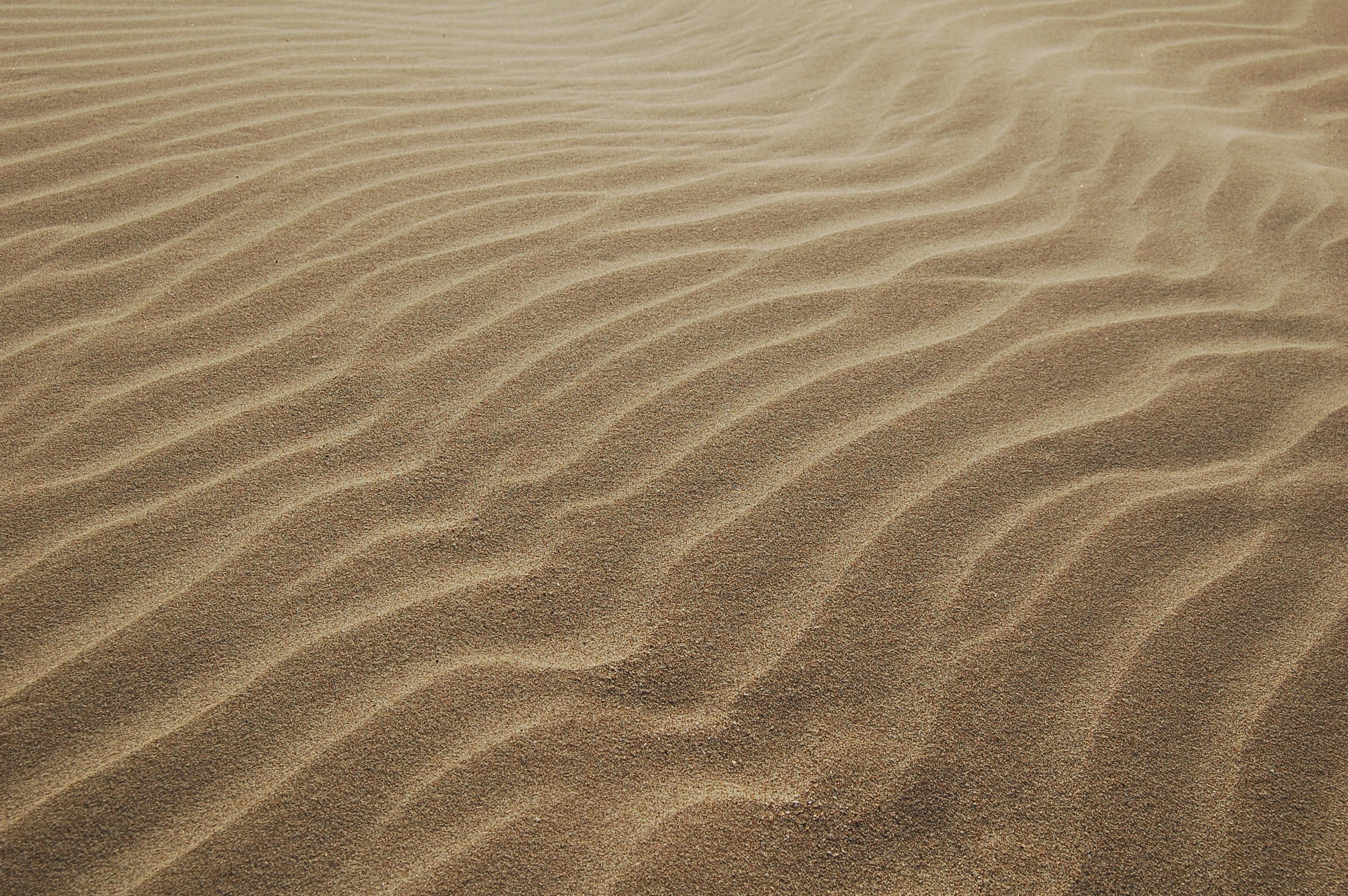 Free Images Sand Wood Texture Desert Floor Line