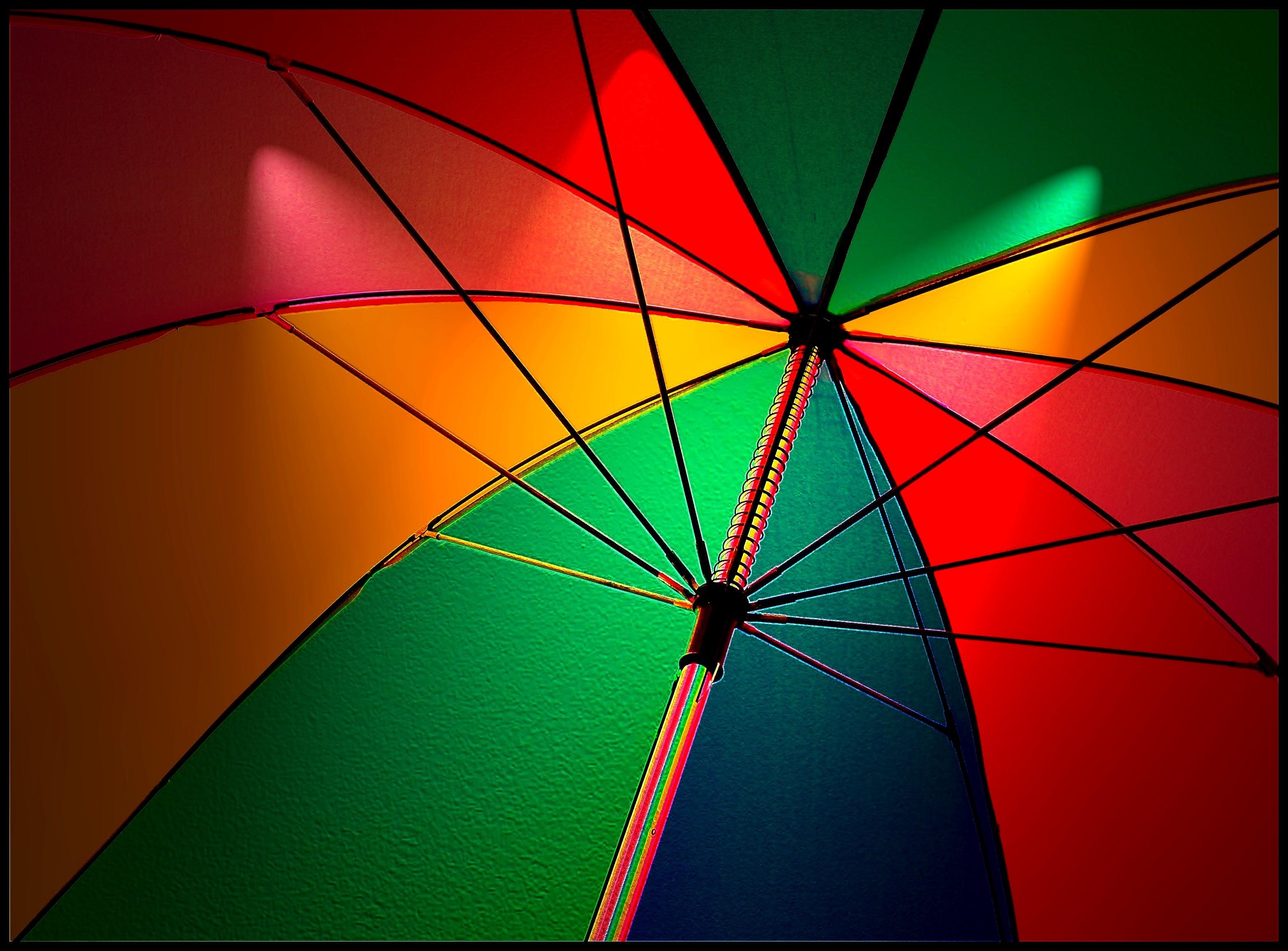 Free Images : screen, light, sky, sunlight, leaf, glass, line, green ...