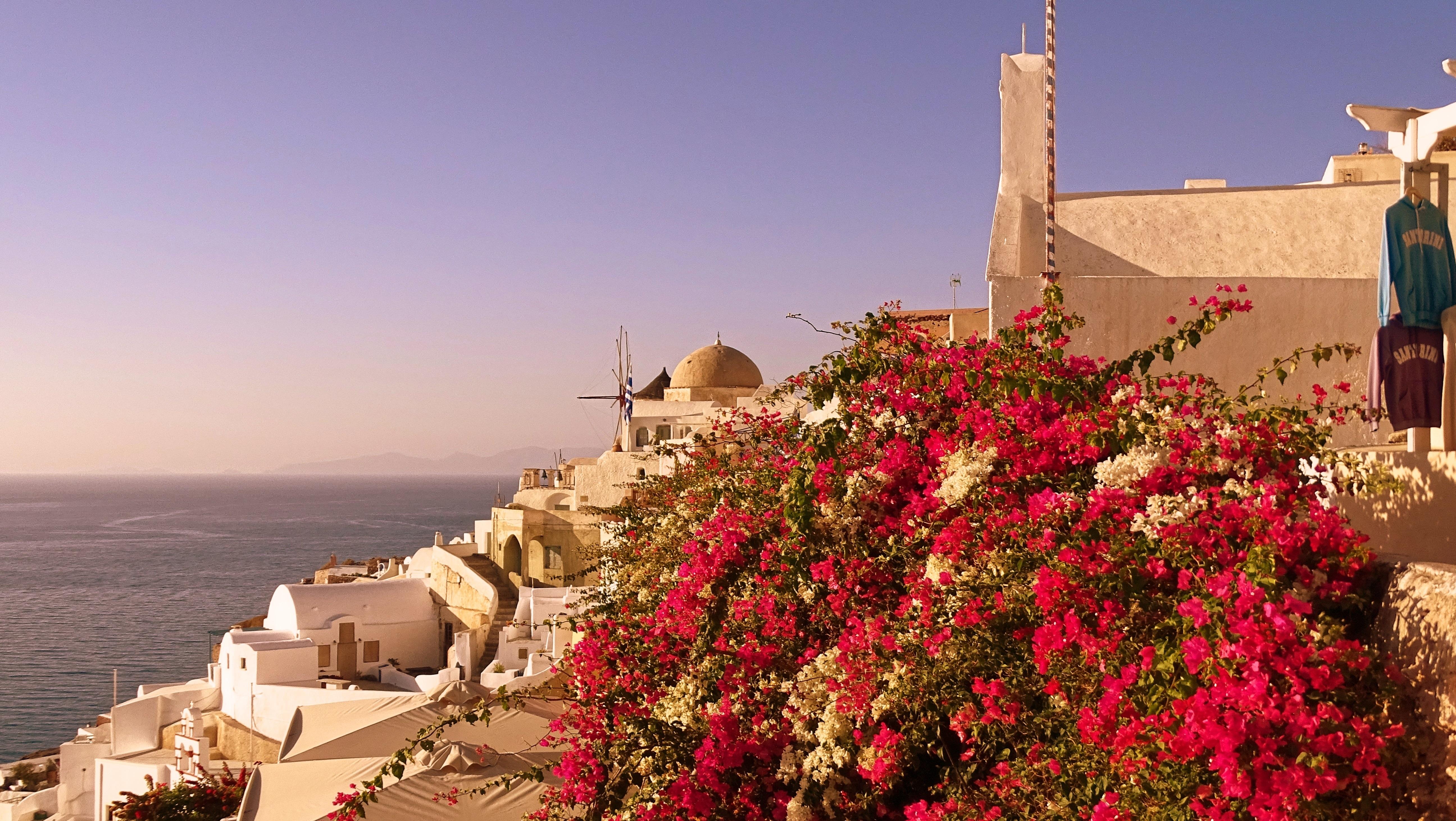 можно картинки на рабочий стол цветы греции время, когда