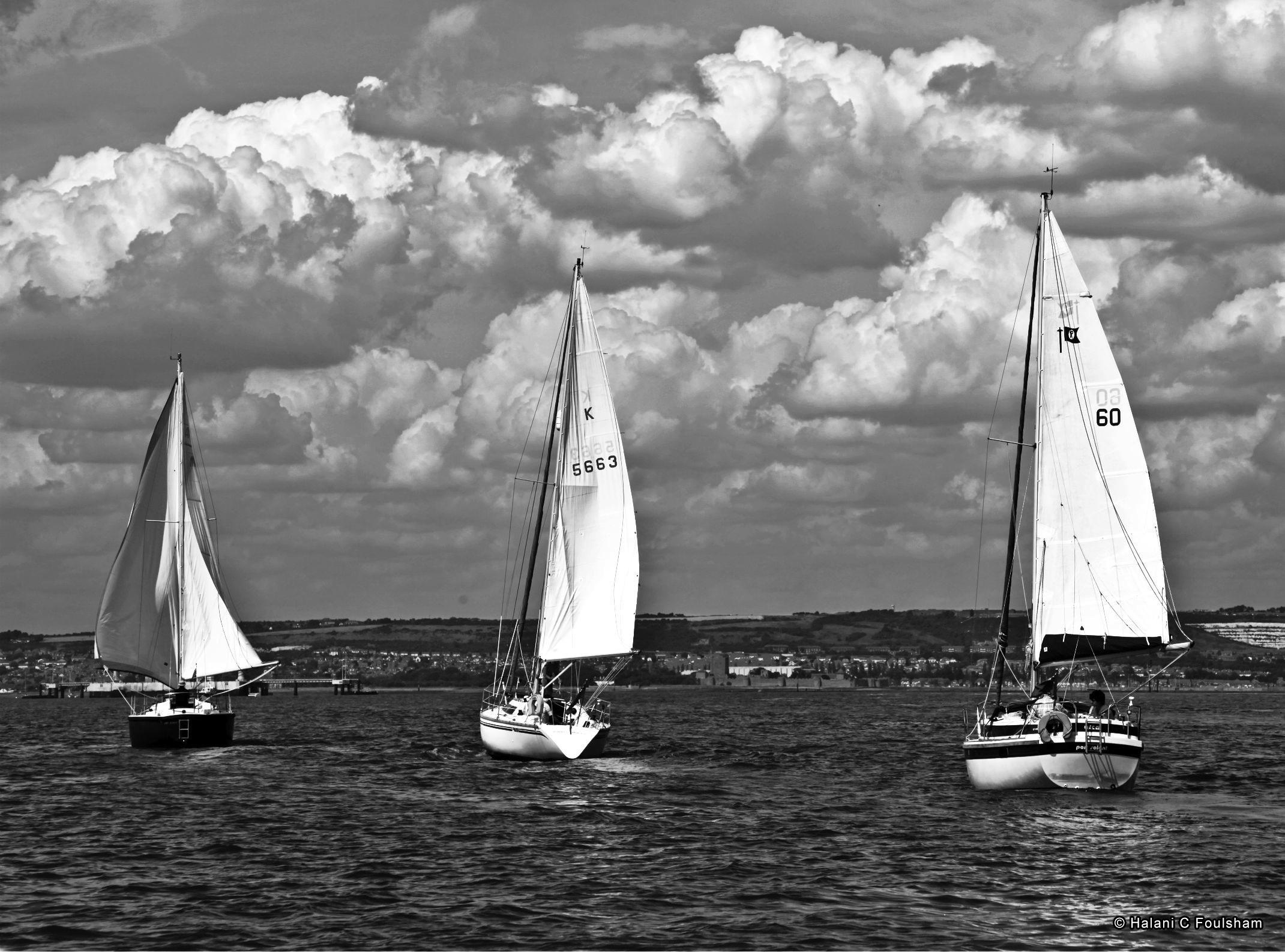 Segelboot zeichnung schwarz  Kostenlose foto : Meer, Schwarz und weiß, Himmel, Boot, Schiff ...