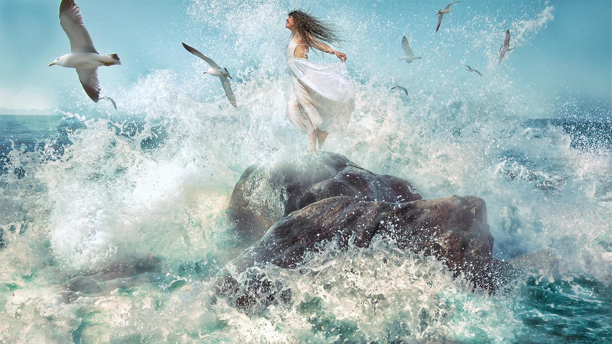 Gambar Lautan Wanita Gelombang Terbang Camar Bawah