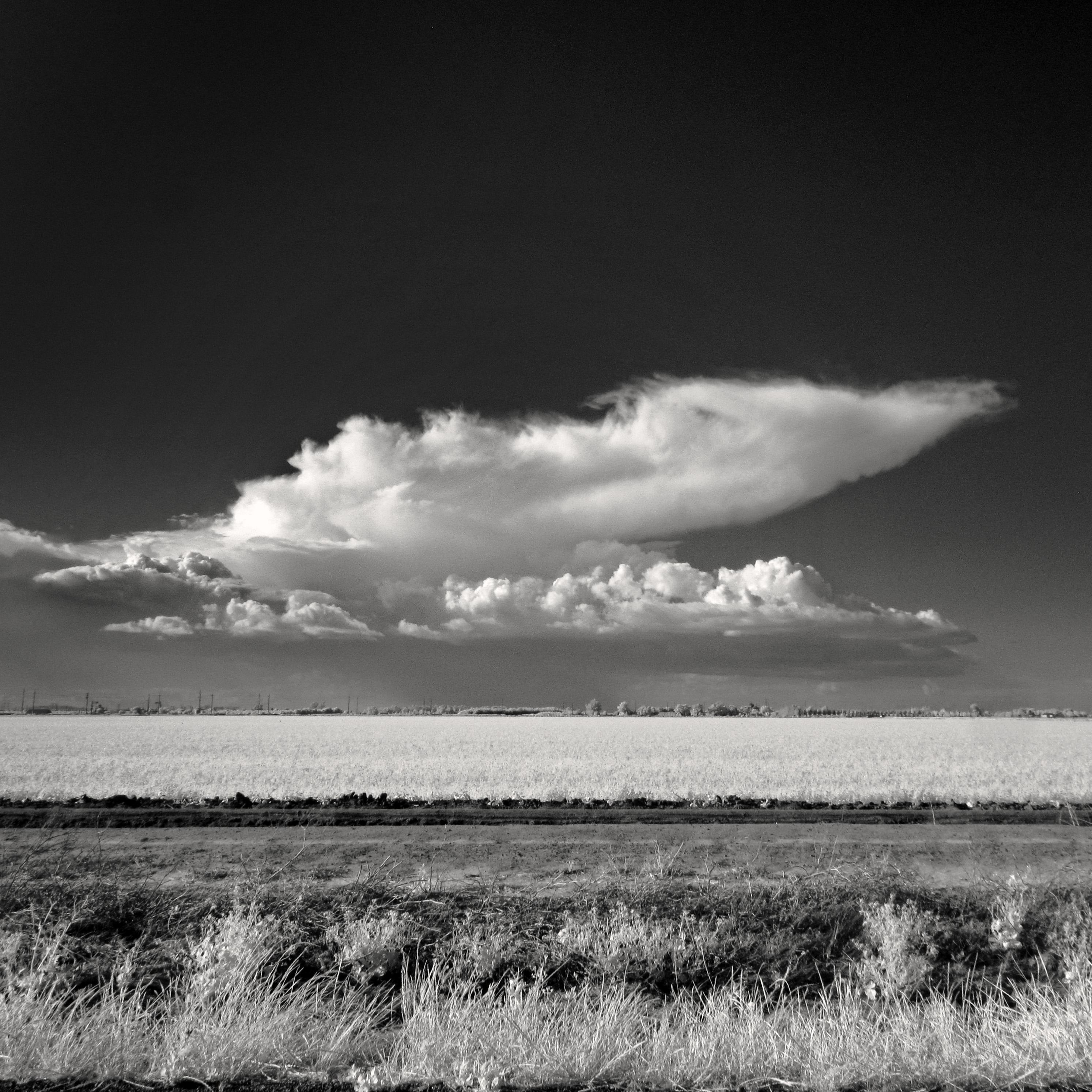Небо и горизонт черно белое фото