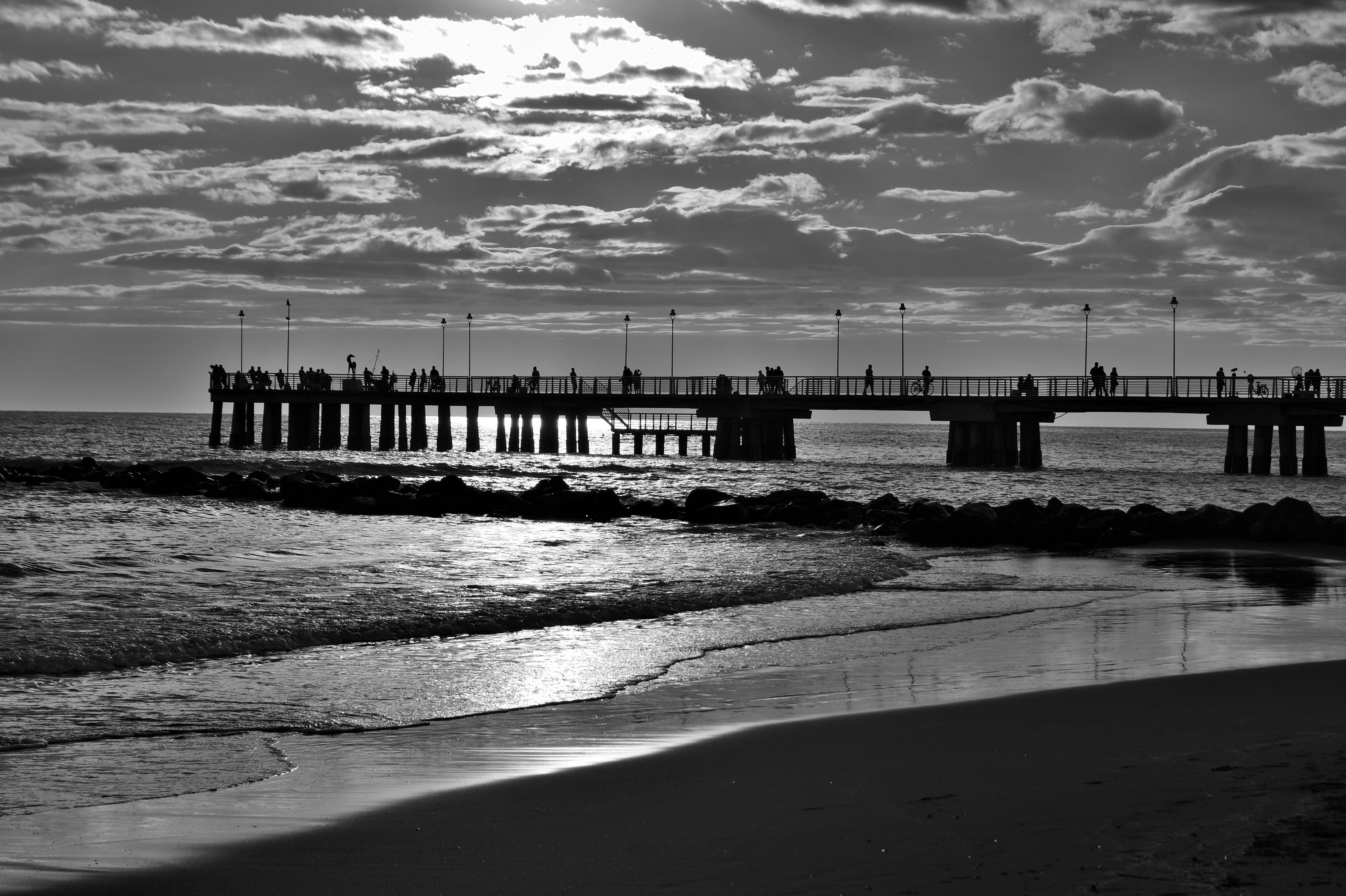 фото черно белые пристань обитают почти