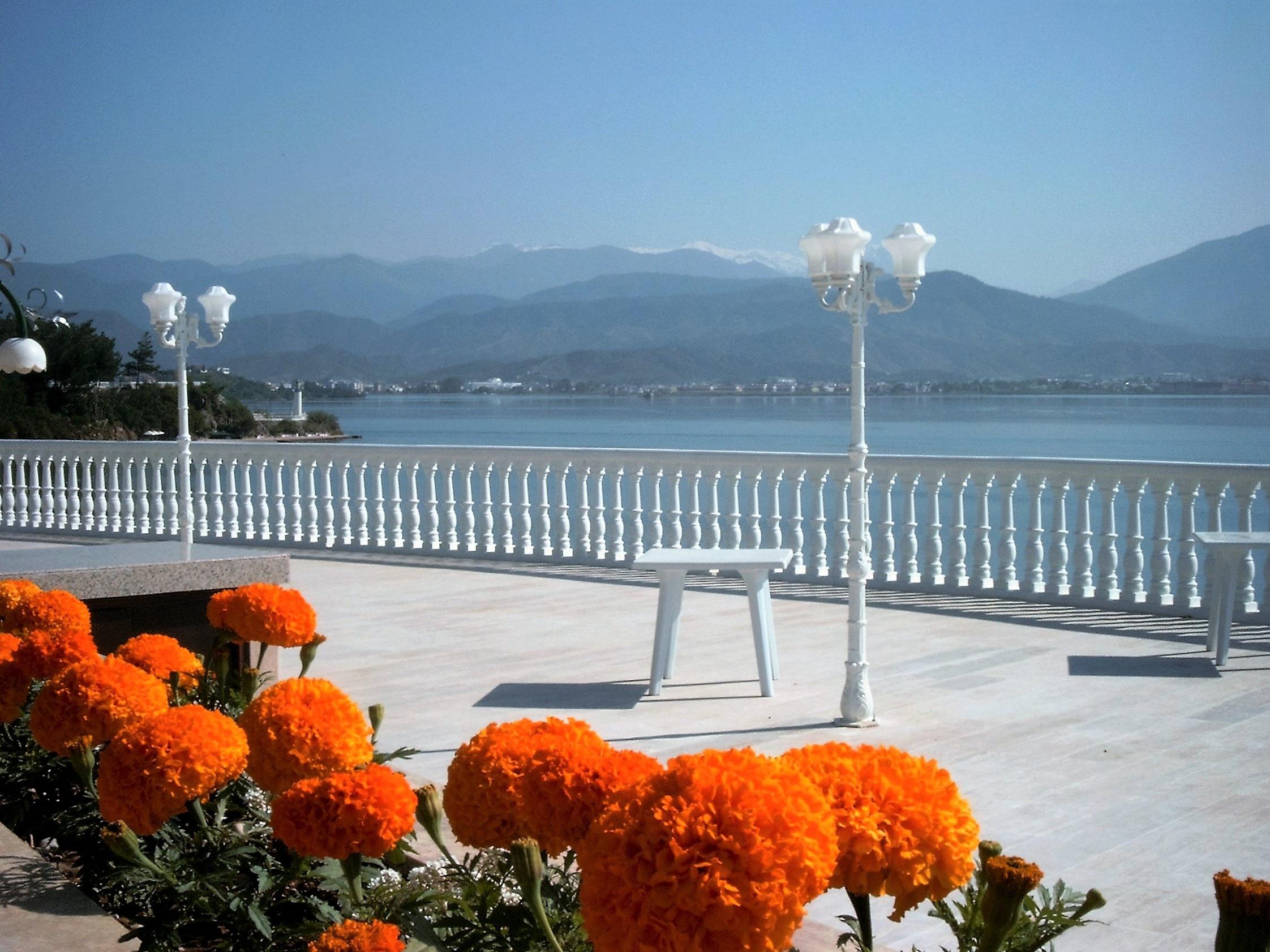 Фото цветы турция 136