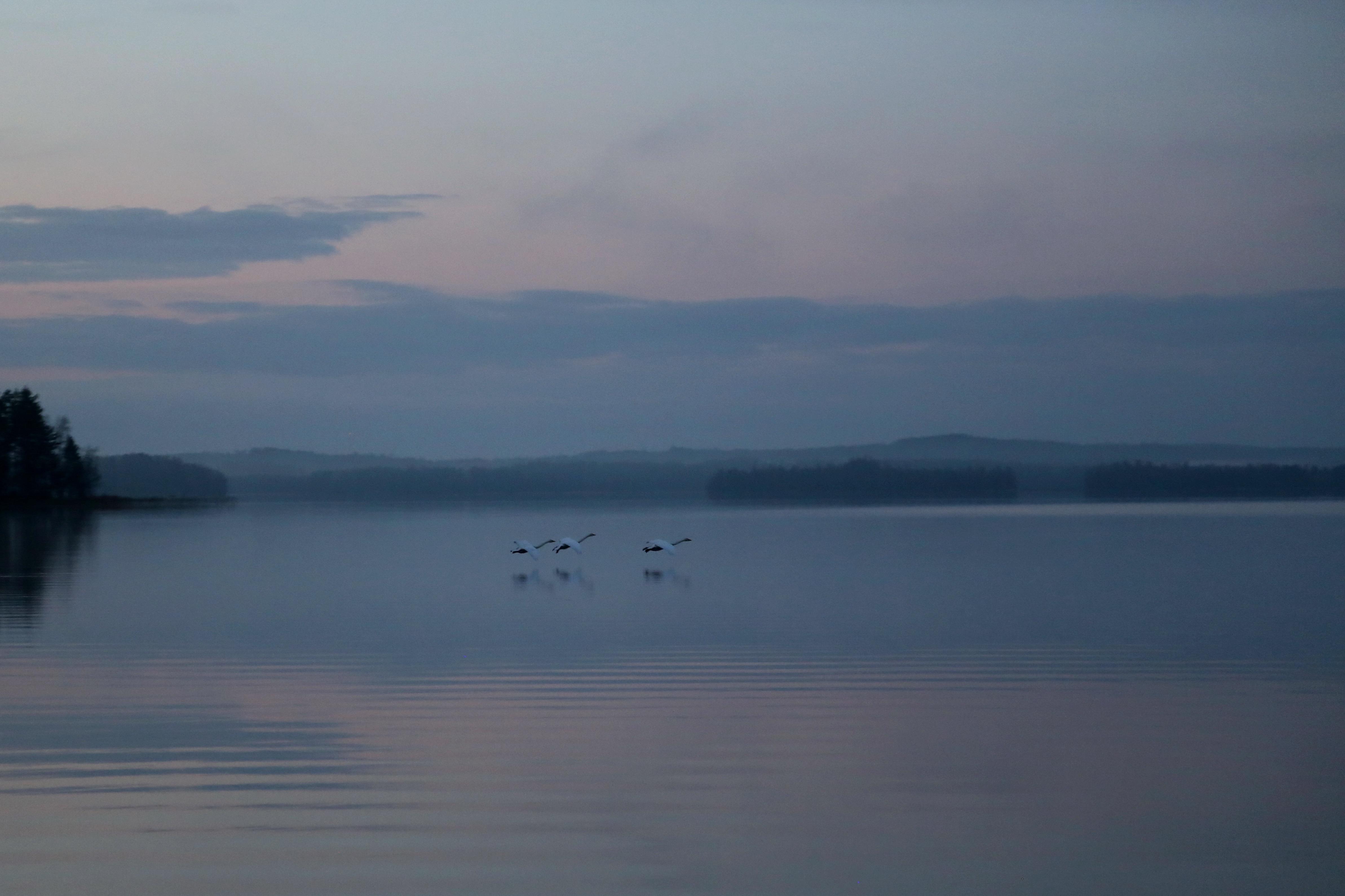Free Images : sea, coast, nature, ocean, horizon, mountain, cloud