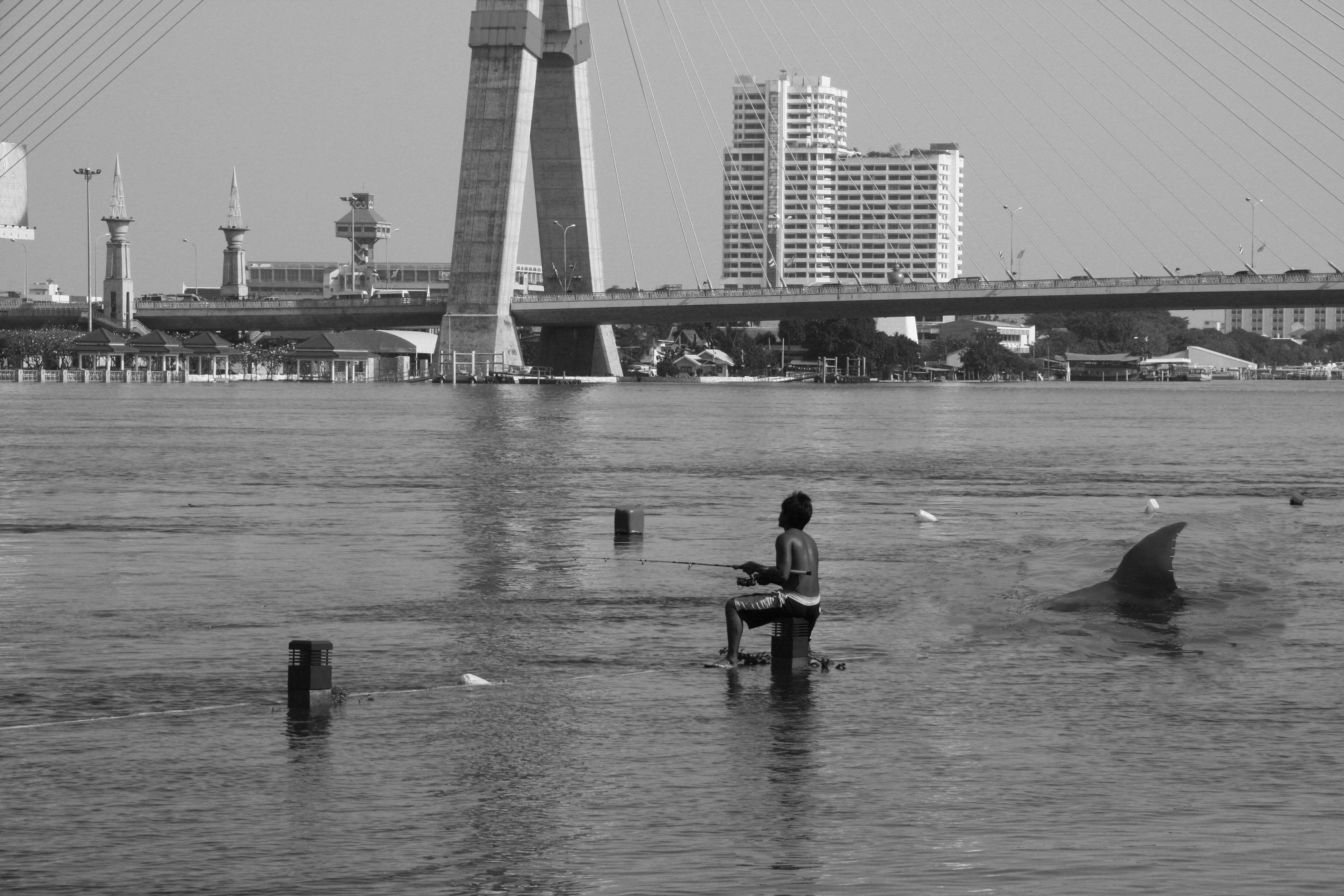Kostenlose Foto : Meer, Küste, Wasser, Natur, Silhouette