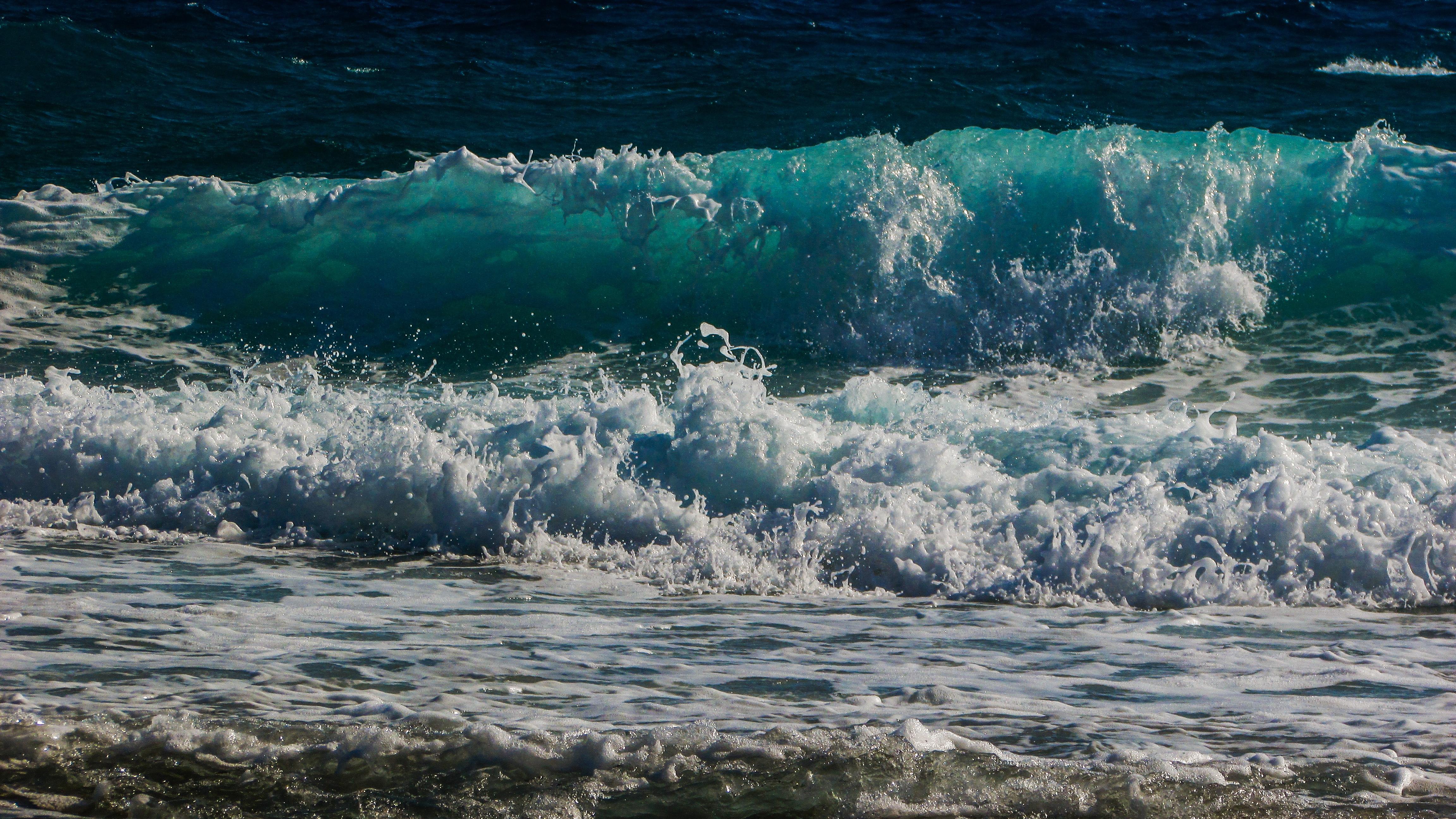 Картинки живые море, выздоравливай