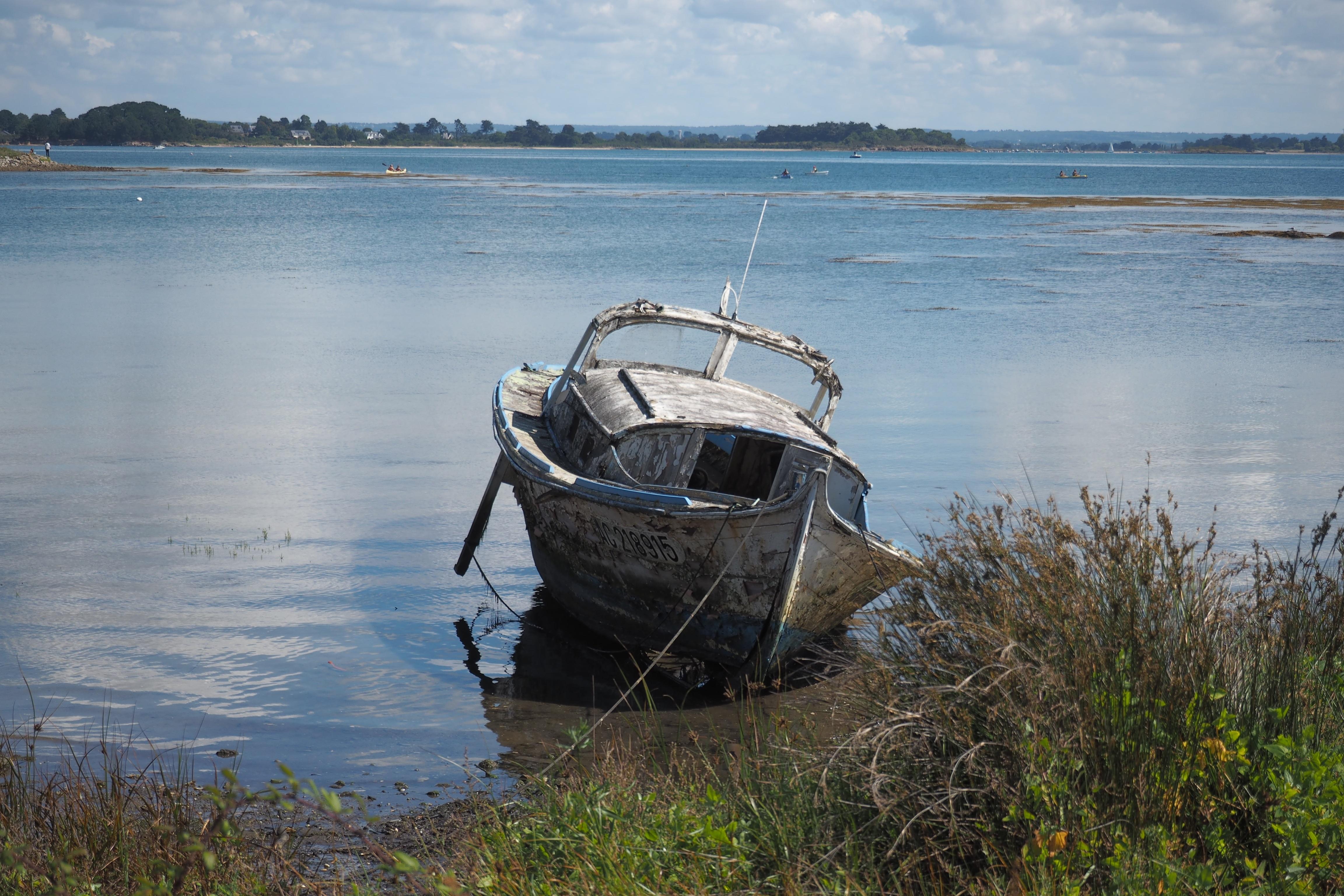 Kostenlose foto : Meer, Küste, Wasser, Seil, Boot, Ufer, See ...