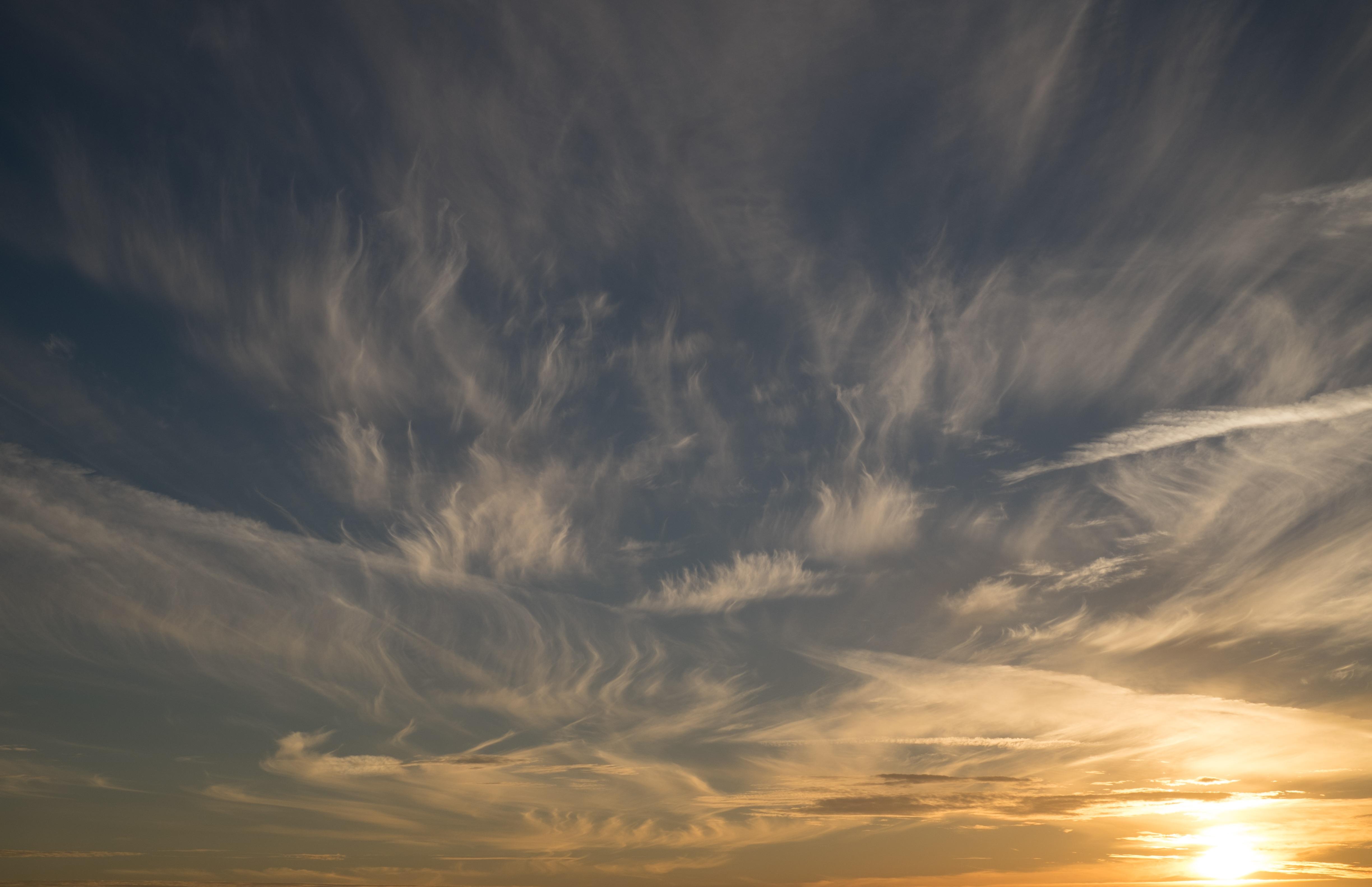 Картинка определение сторон горизонта по солнцу как предыдущем