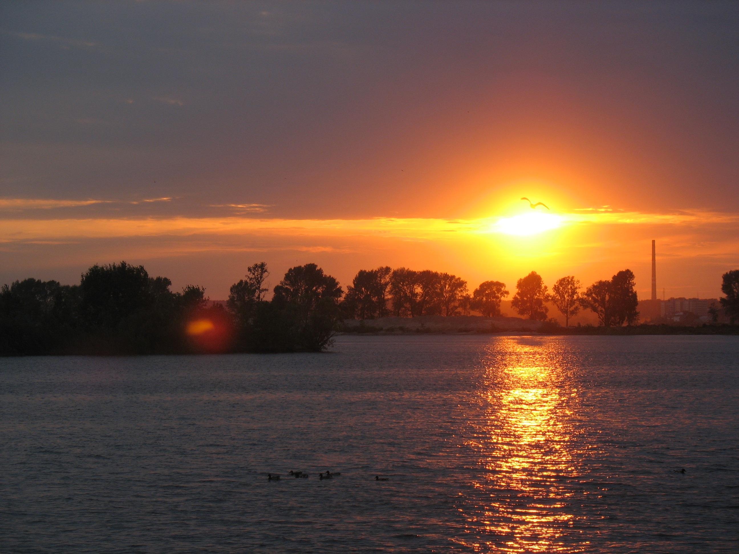 требования кормушкам фото восхода солнца над ригой собственной карьере
