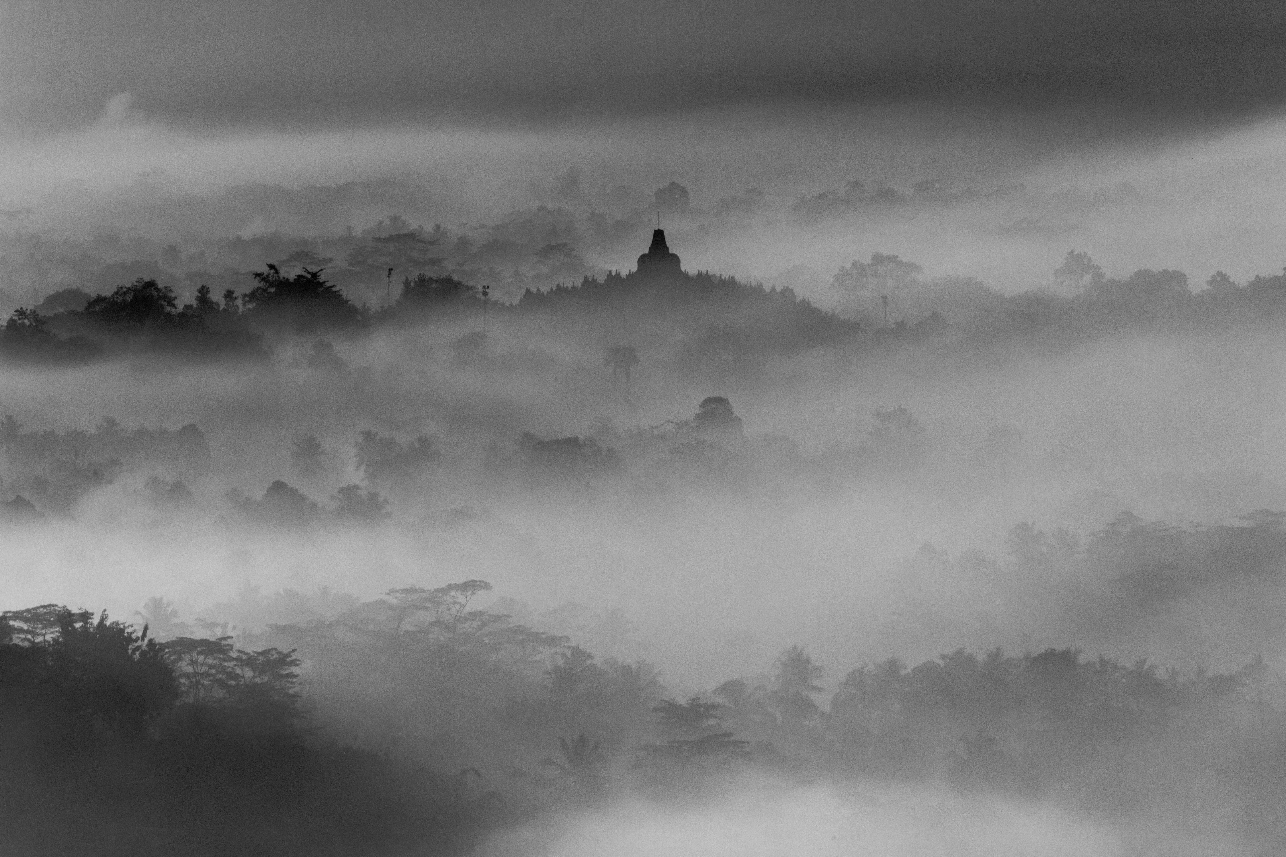 черный туман картинки обычно