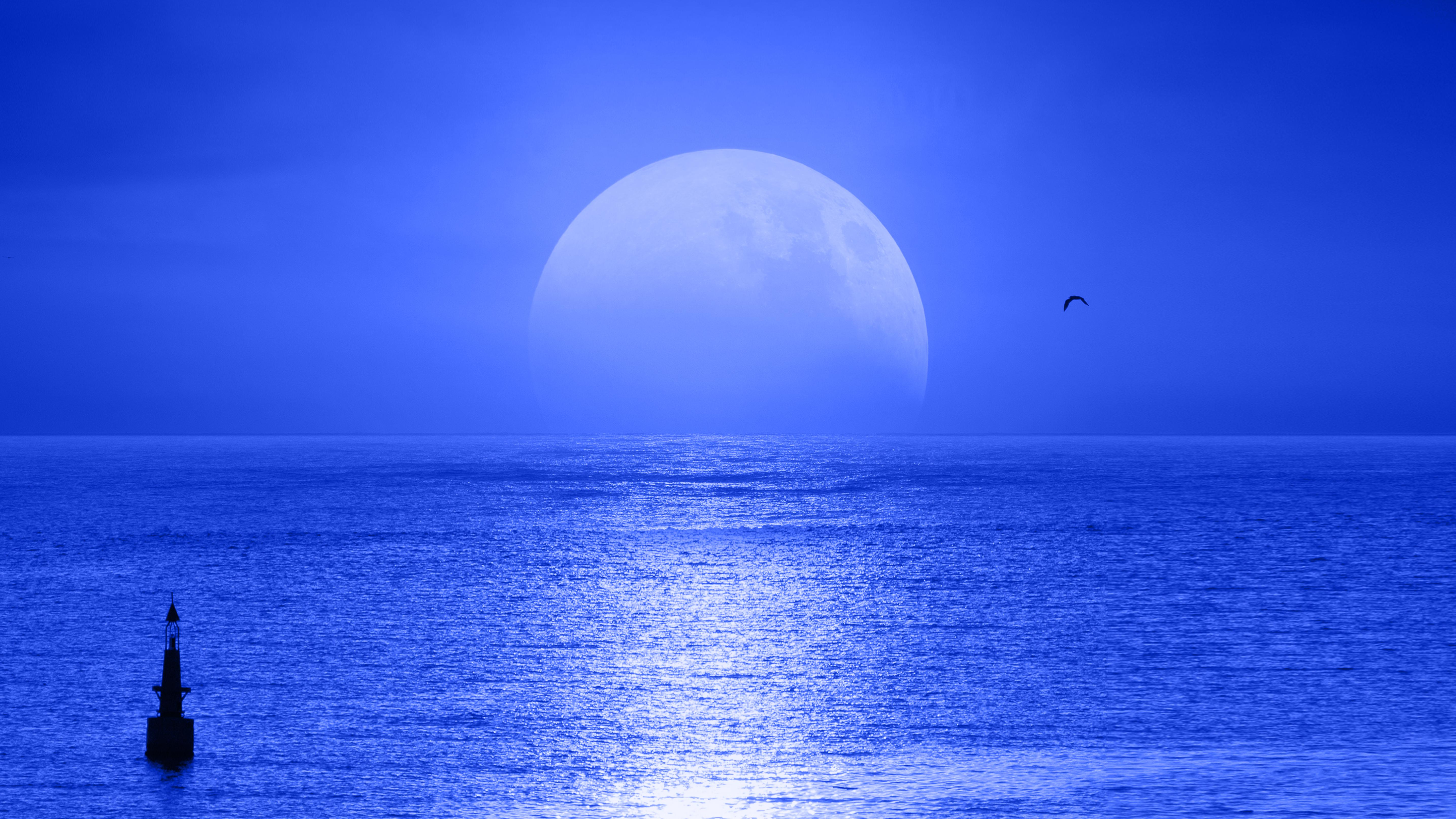 луна над водой картинка которыми обладало животное