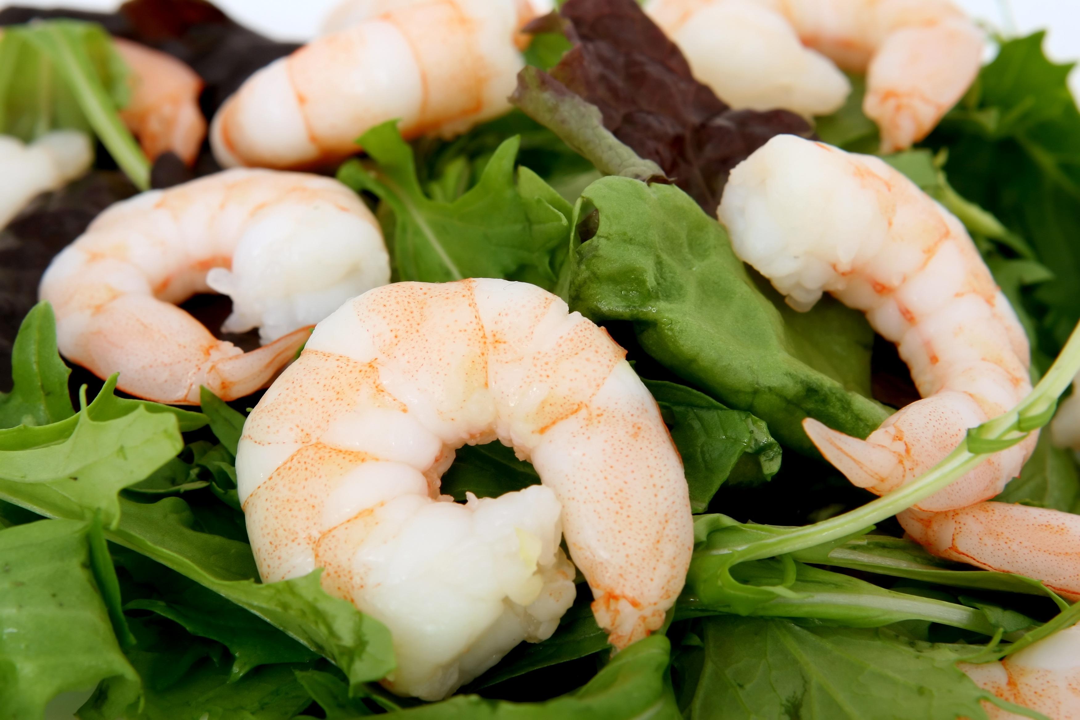 Gambar Restoran Asia Hidangan Salad Hijau Cina Alam