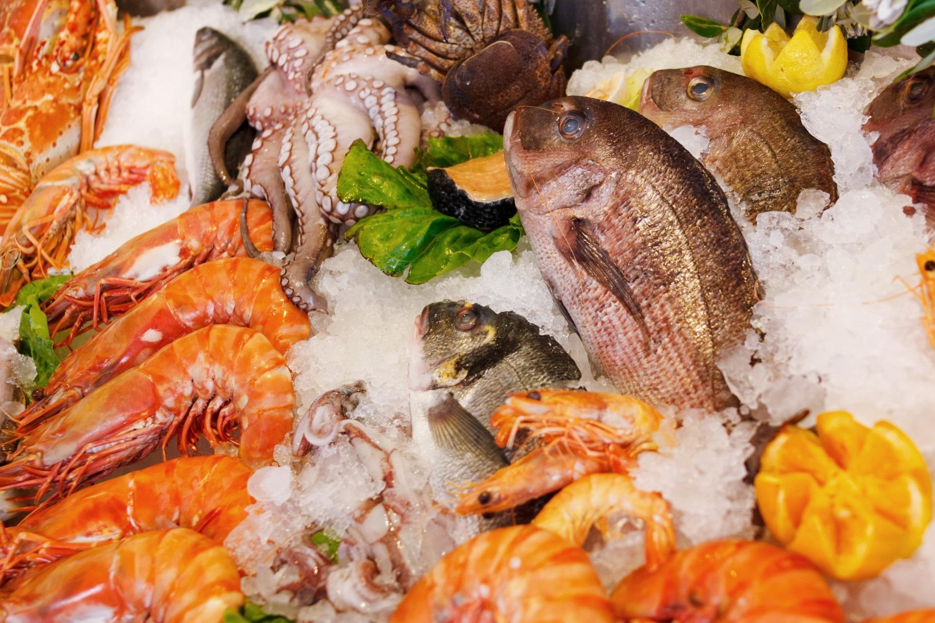Gambar Restoran Es Hidangan Makanan Laut Segar Ikan