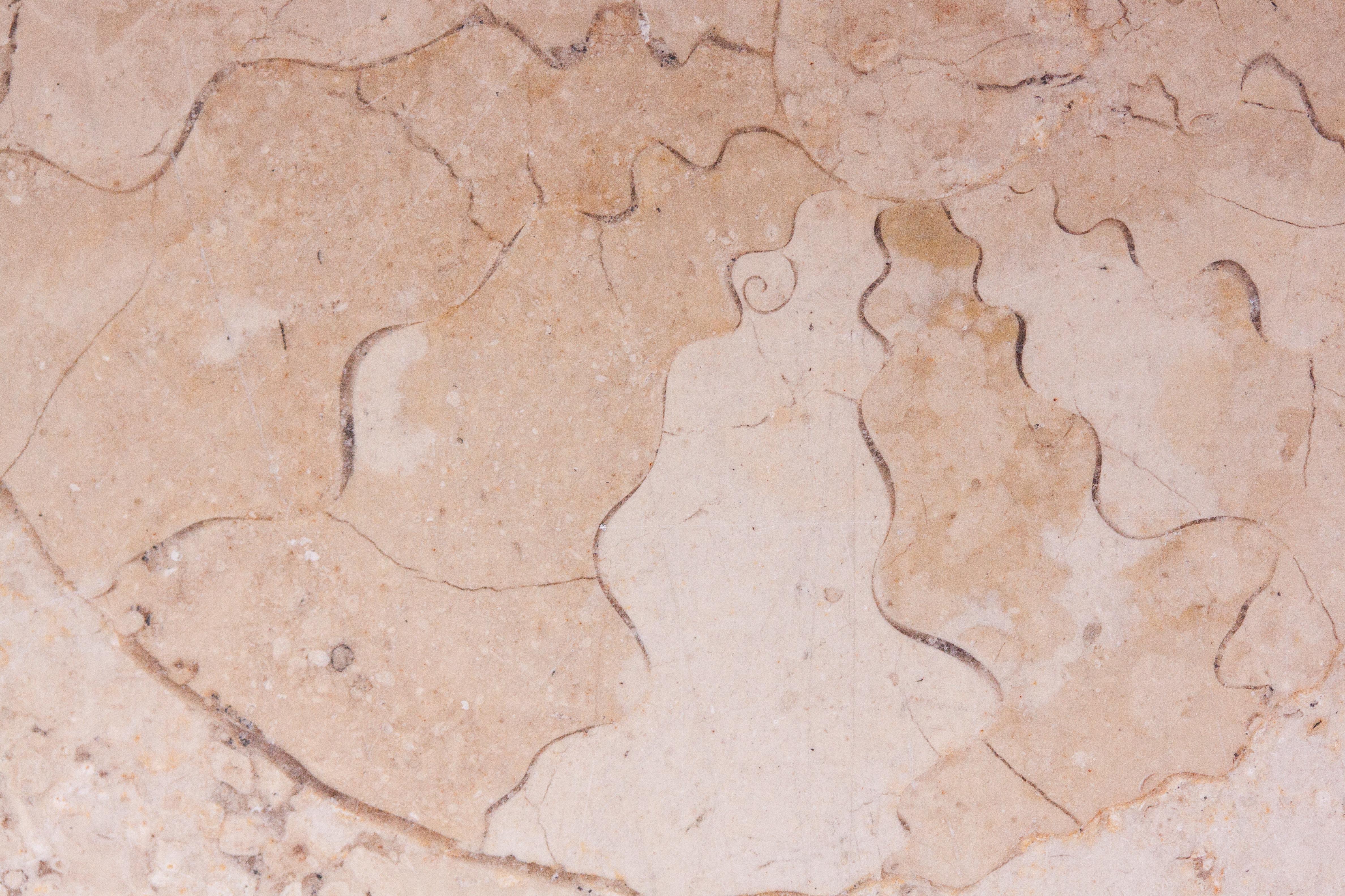 Free Images Sea Rock Texture Floor Wall Macro Soil