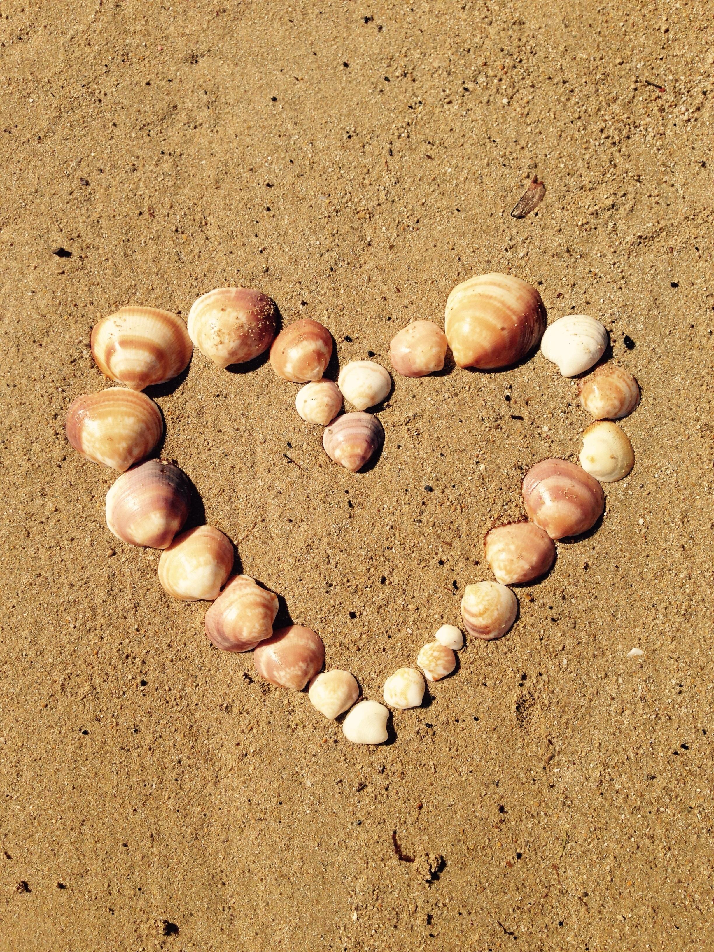 Images gratuites mer le sable amour c ur mod le aliments produire marron jaune perle - Images coeur gratuites ...