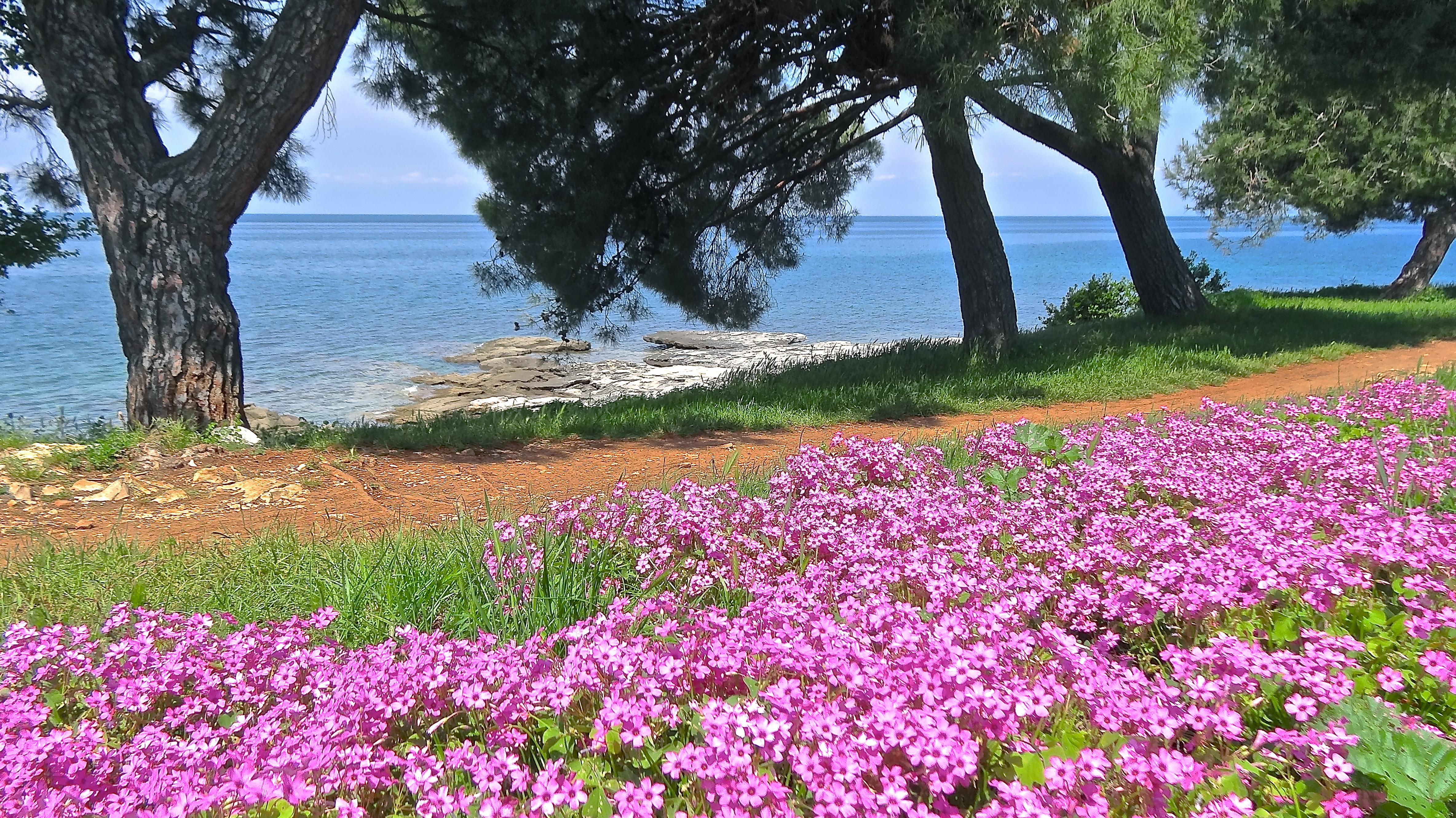 Фото виды крымского побережья содержит подробное