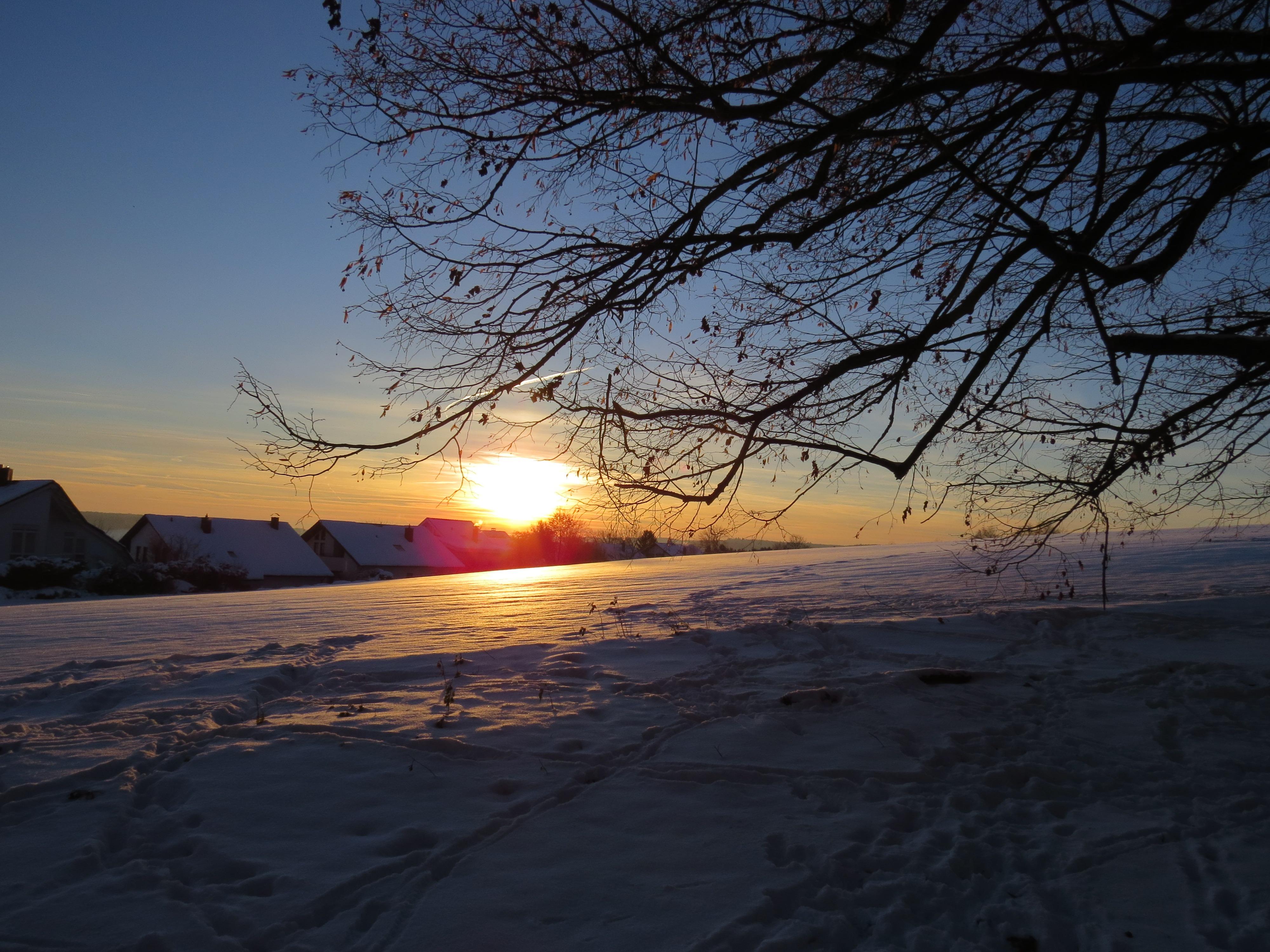 Sea Tree Snow Cold Winter Cloud Sky Sun Sunrise Sunset Sunlight Morning Dawn Dusk Ice Evening