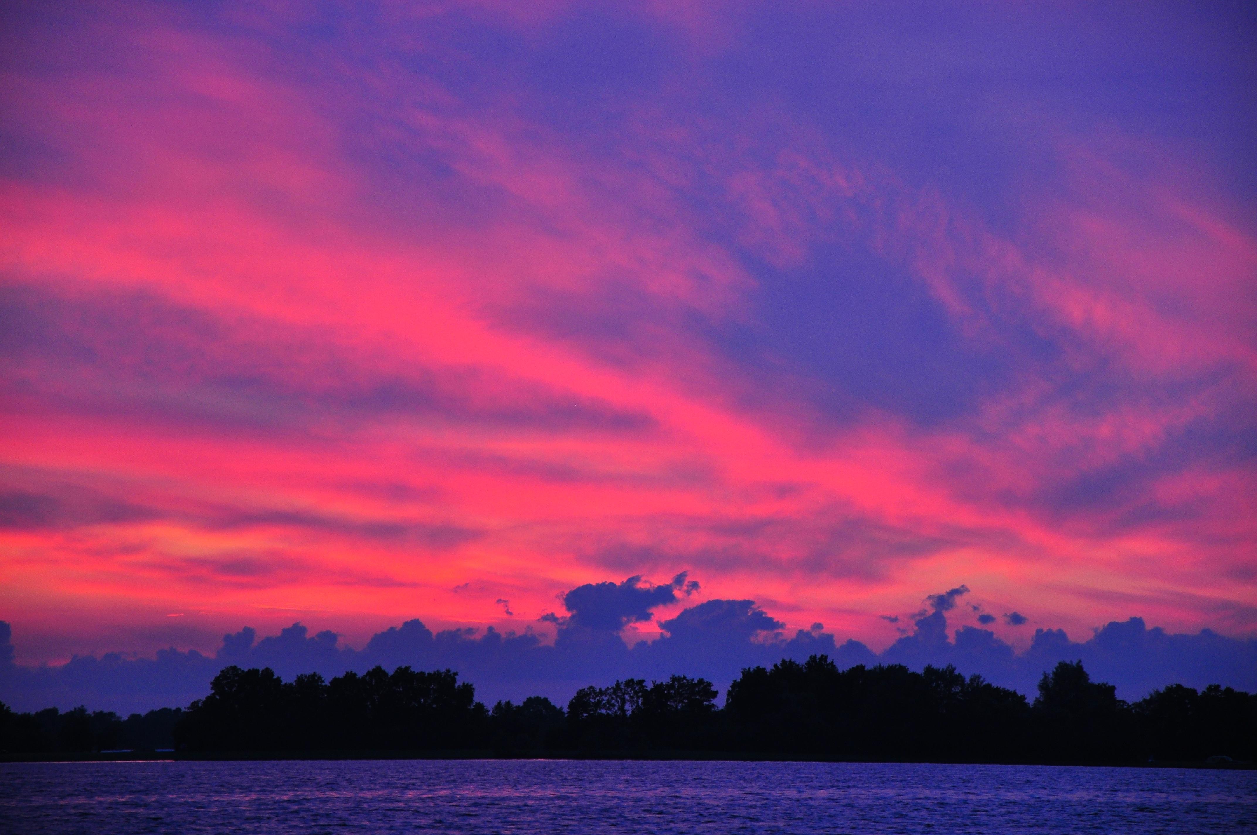 картинки лиловое небо легко запоминающиеся