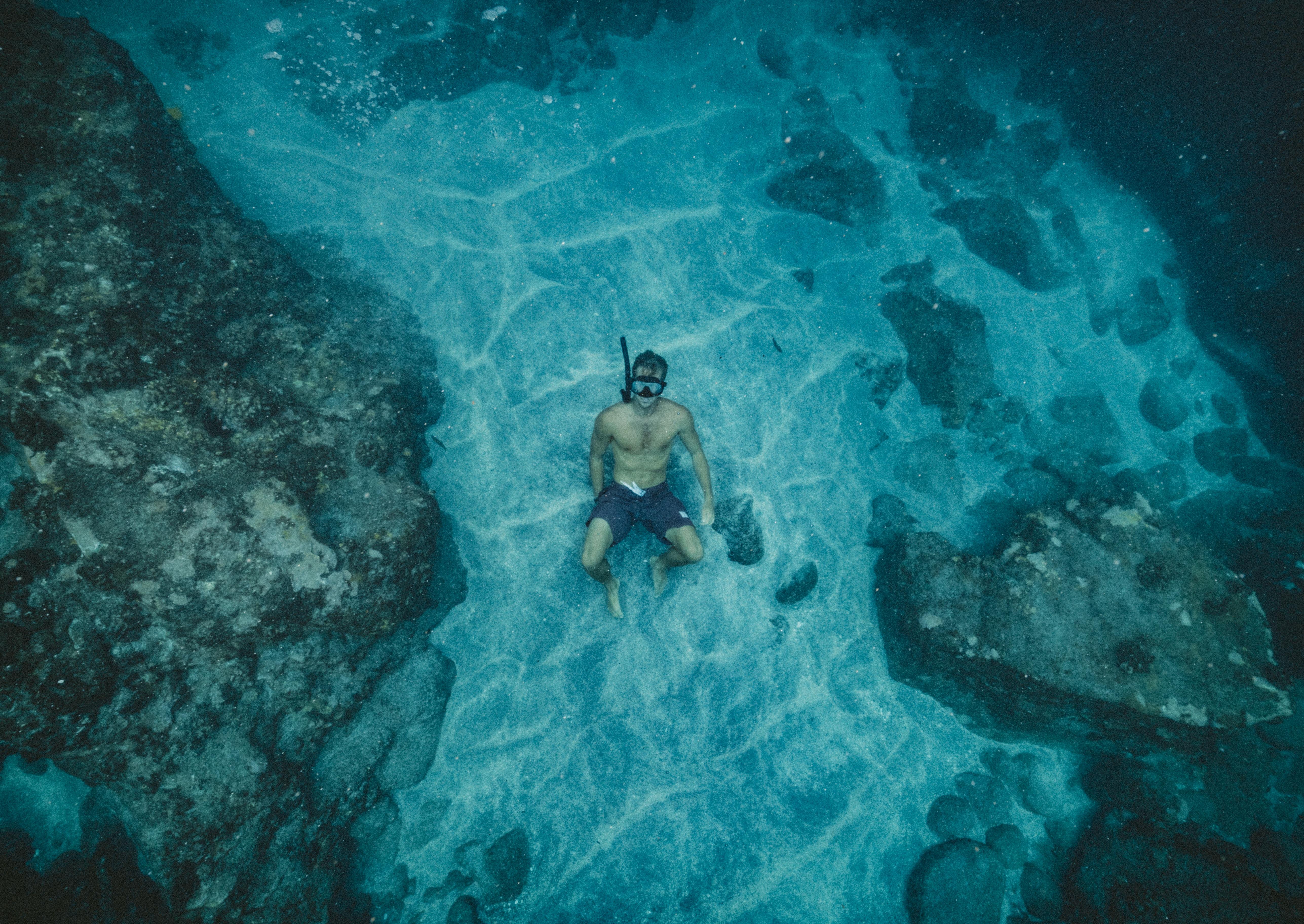 39d16969c more voda oceán tvorenie potápanie podvodná plávanie útes freediving  šnorchlovanie organizmus potápanie morské jaskyne morská biológia