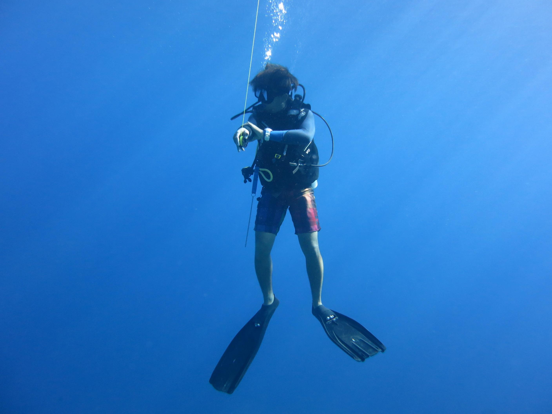 все картинка аквалангист в море принадлежность