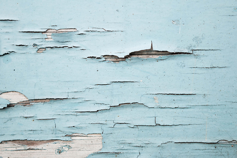 Gambar Laut Kayu Dinding Ikan Sketsa 3000x2000