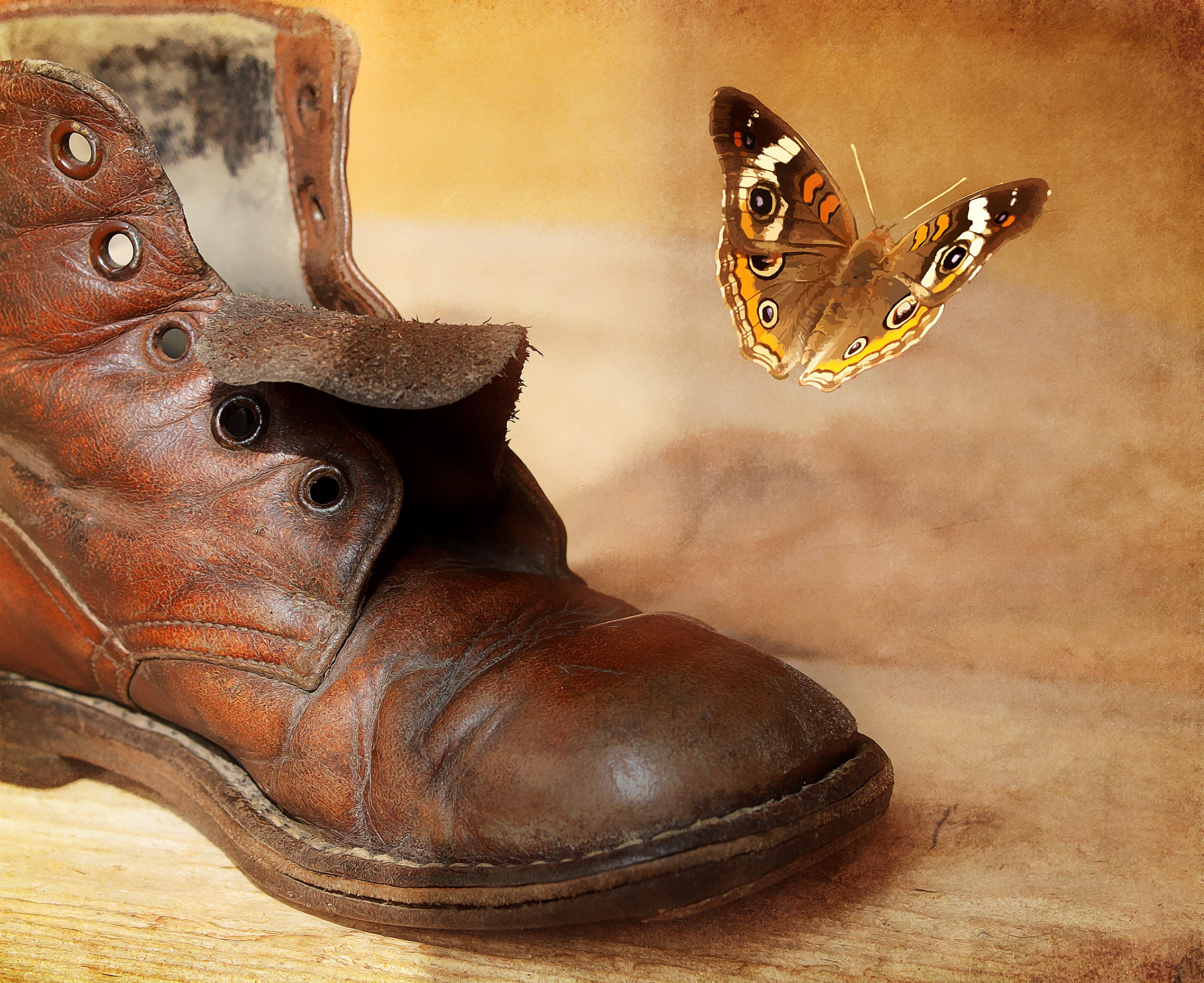 детали картинка старого ботинка крабовым