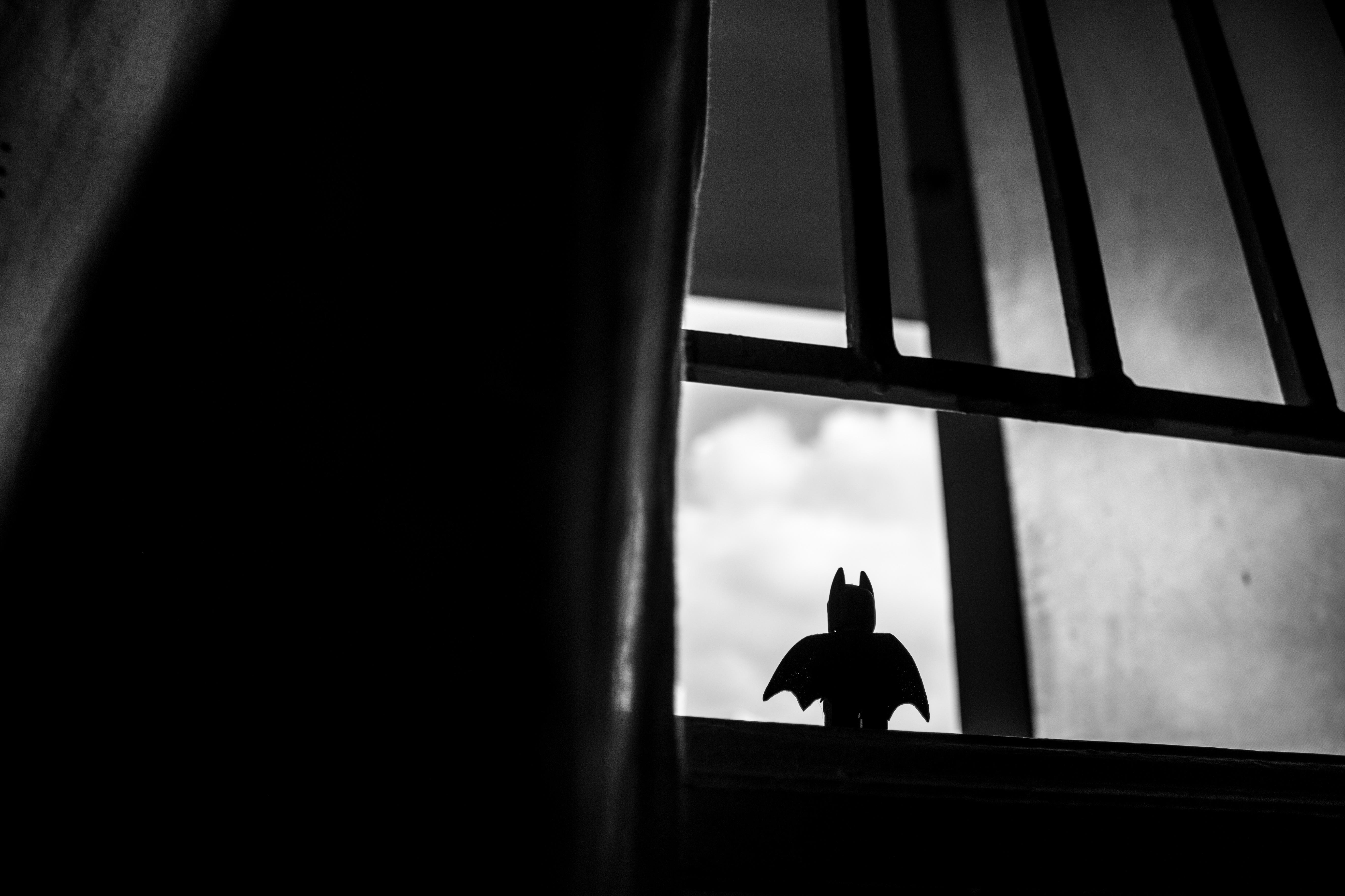 Images gratuites silhouette noir et blanc la for Fenetre noir et blanc