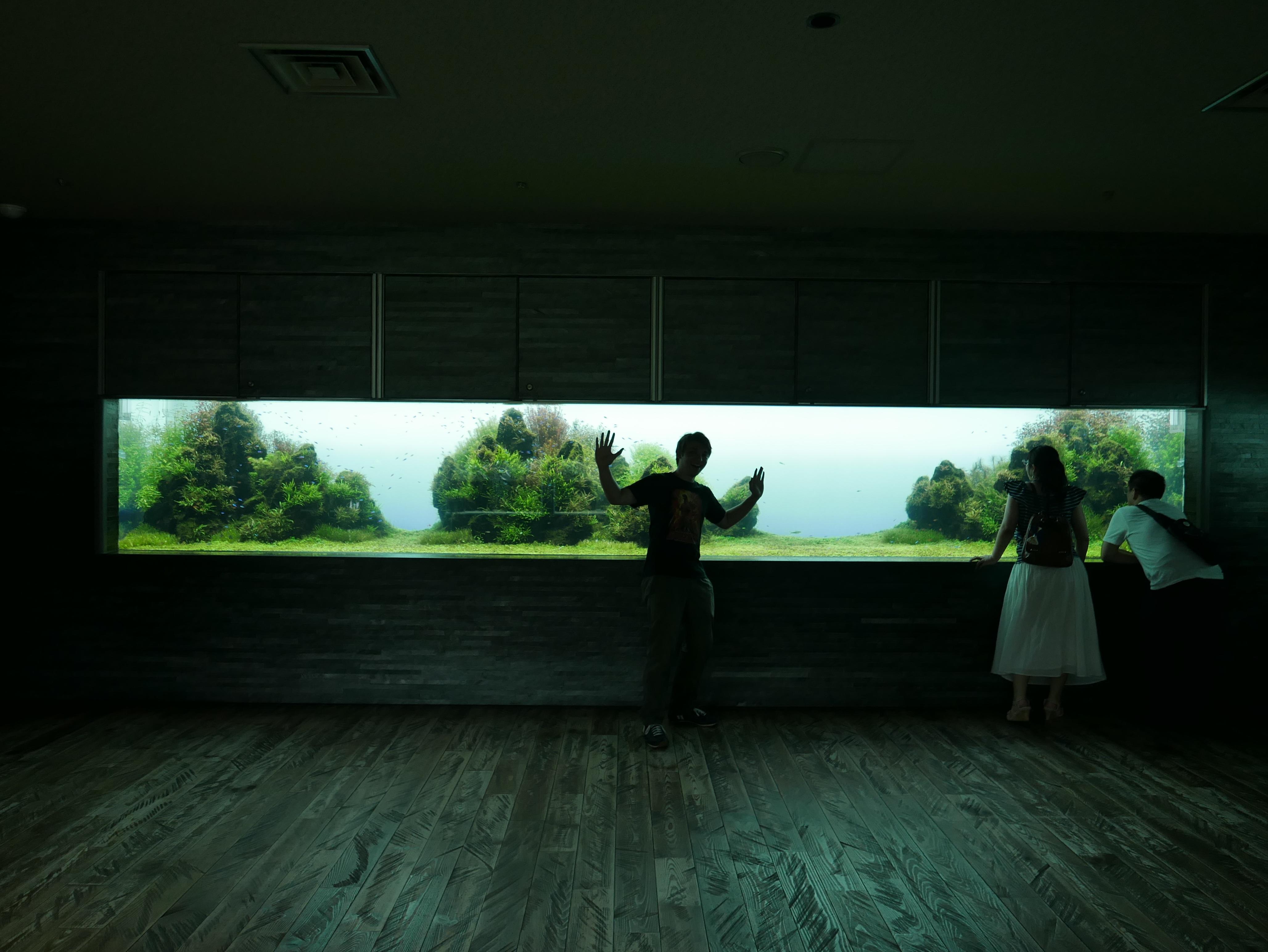 Kostenlose foto : Silhouette, Licht, Haus, Mauer, Tourist, dunkel ...