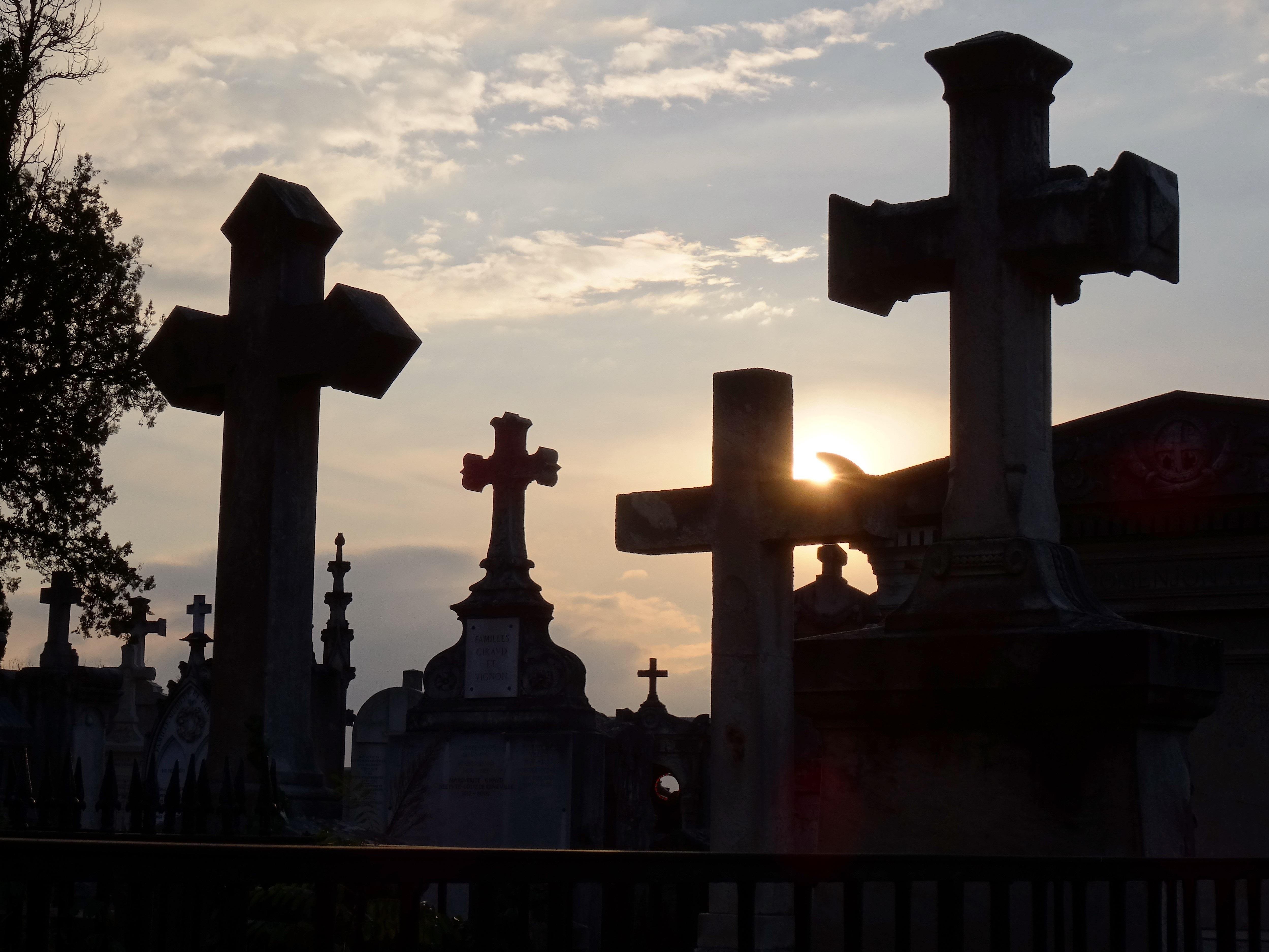 тротуаров поутру зачем наверху делают черные кресты фото хочется увидеть рукопись