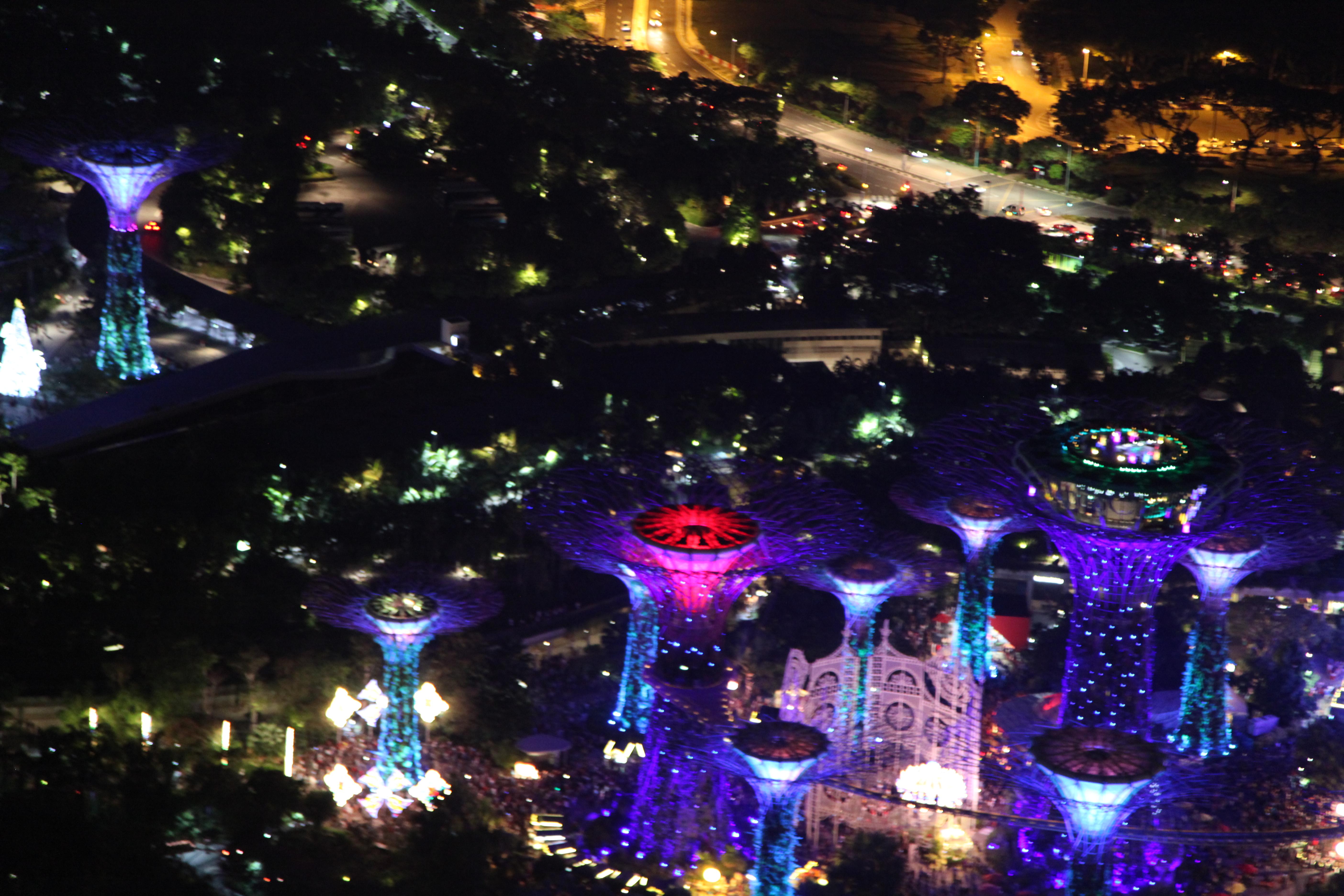 Free Images Singapore Night Light Festival Tree