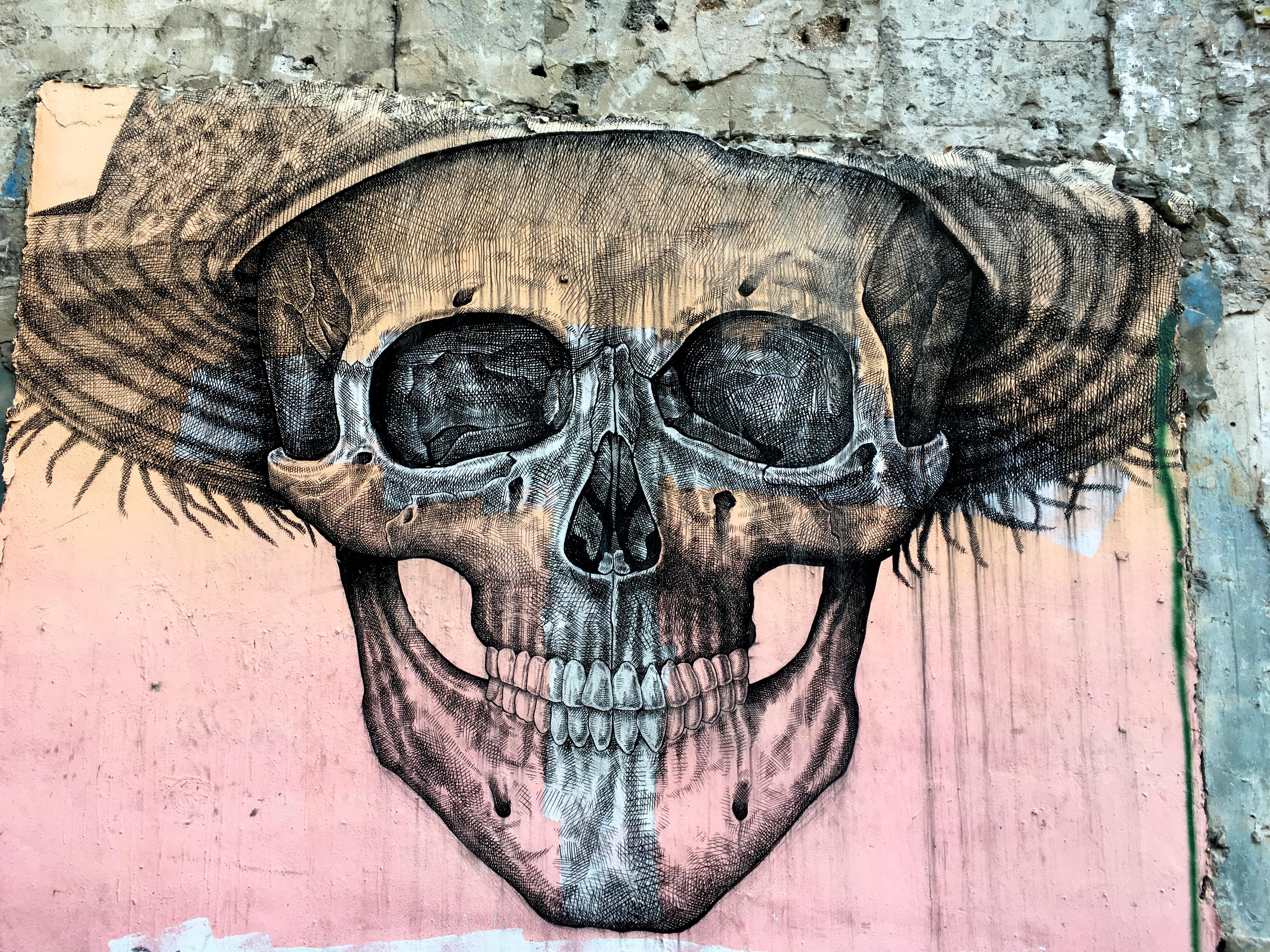 Gambar Tengkorak Tersenyum Tulang Sketsa Gambar